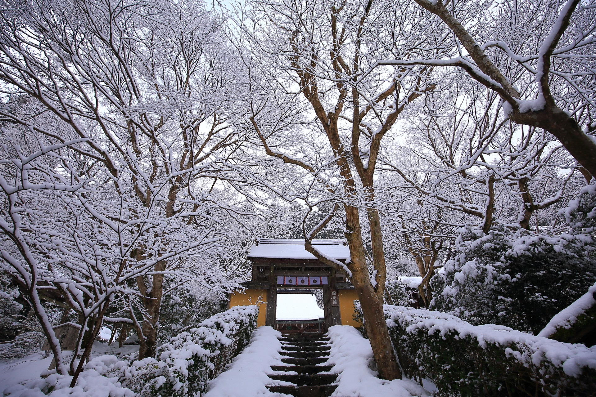 石段の中段から眺めた寂光院の雪景色