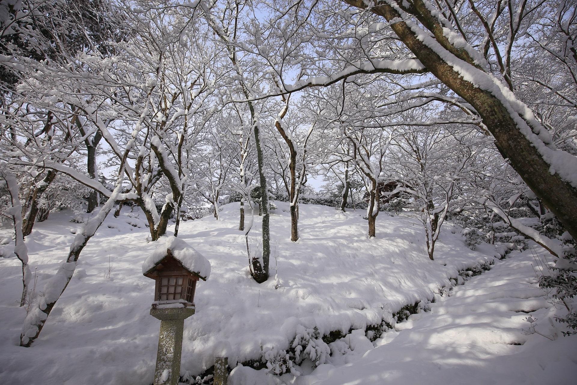 常寂光寺の末吉坂の真っ白な雪景色