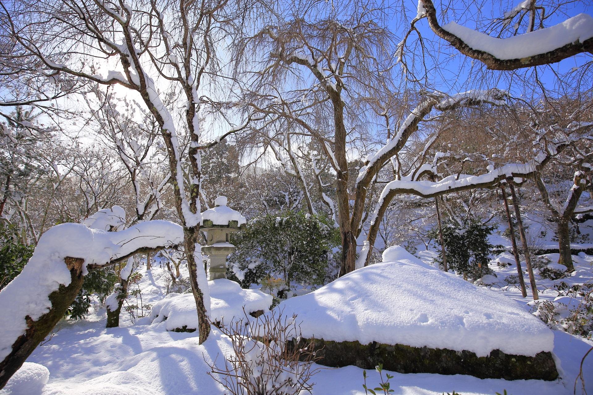 青空の真っ白な雪につつまれた天龍寺
