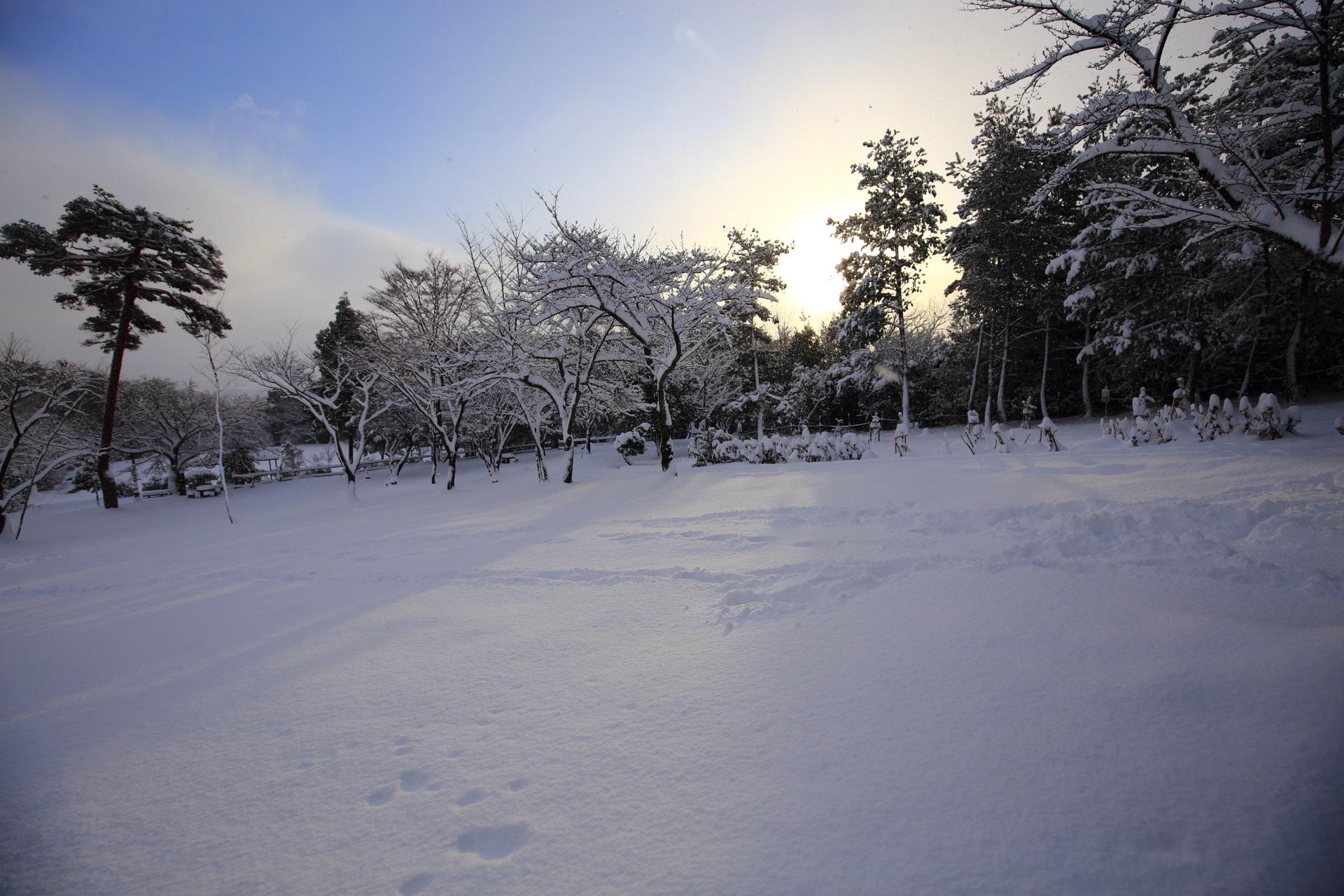 嵐山公園の亀山地区の雪景色と日の出