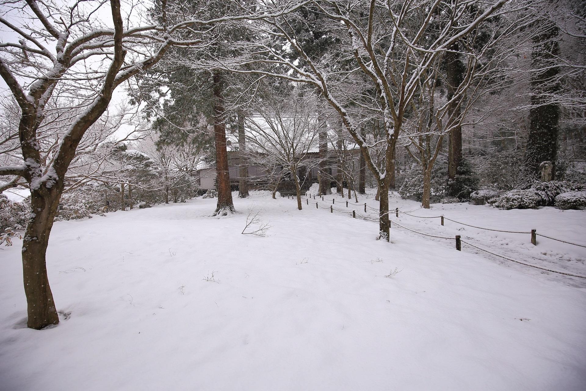 ふかふかの雪が積もった冬の三千院