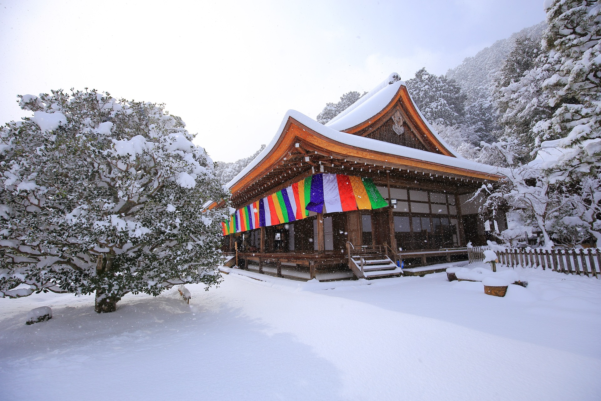 日が差す雪の二尊院