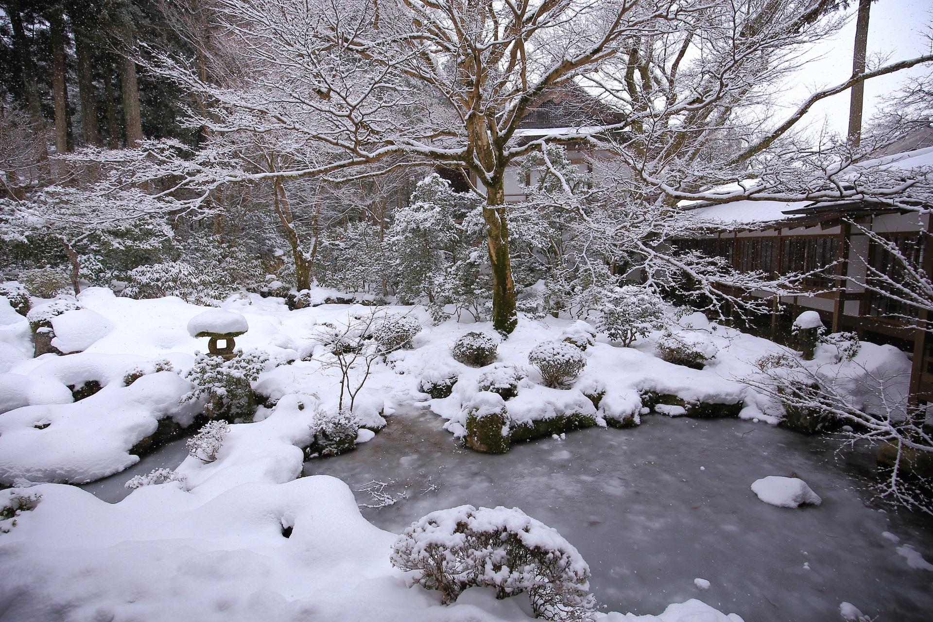 冬の大原三千院のの池