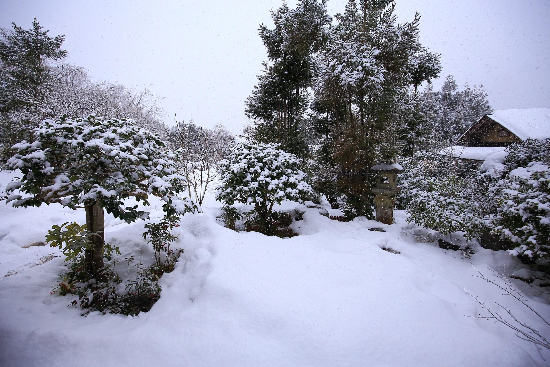 雪 実光院 写真 高画質
