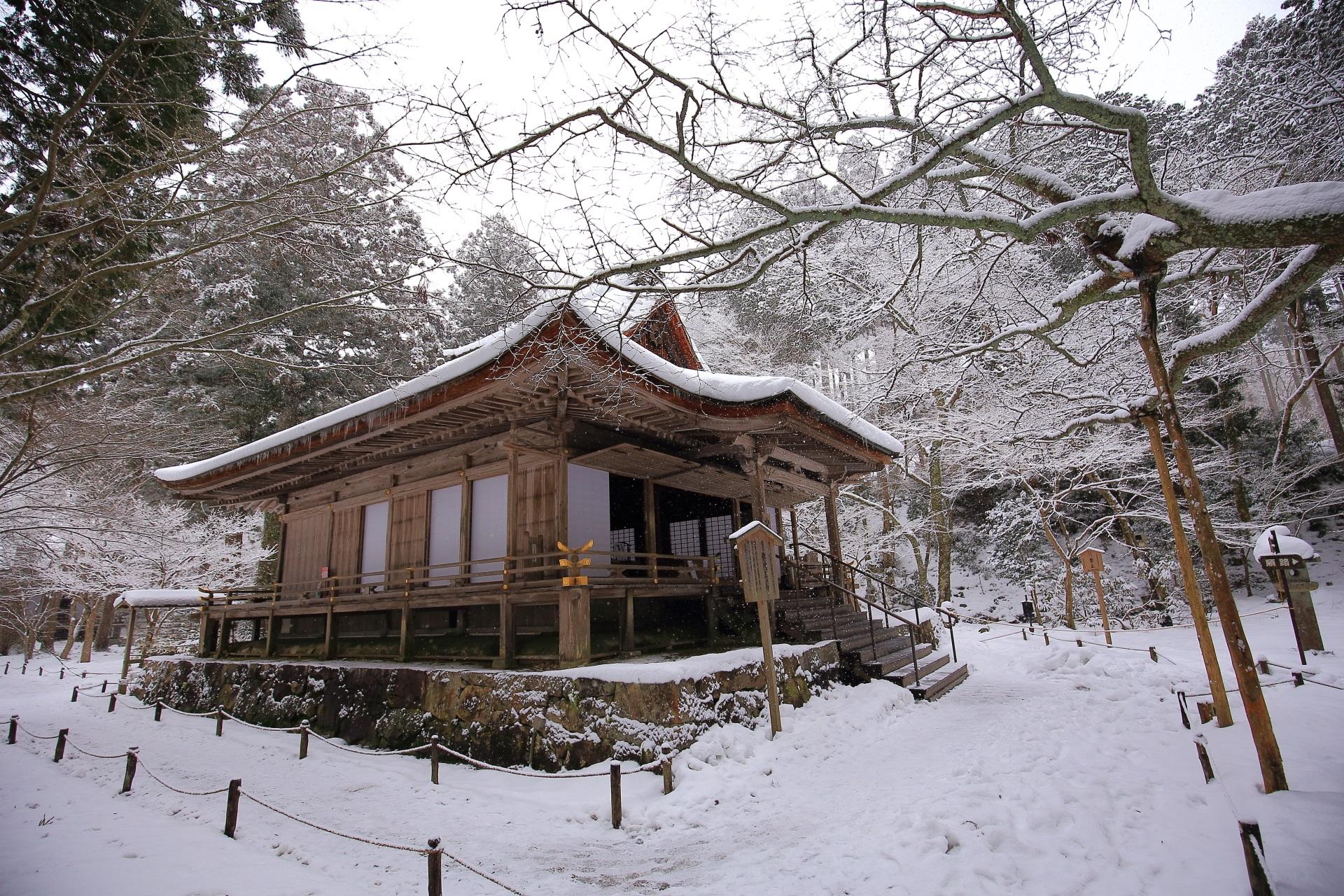 雪の枝が芸術的な三千院