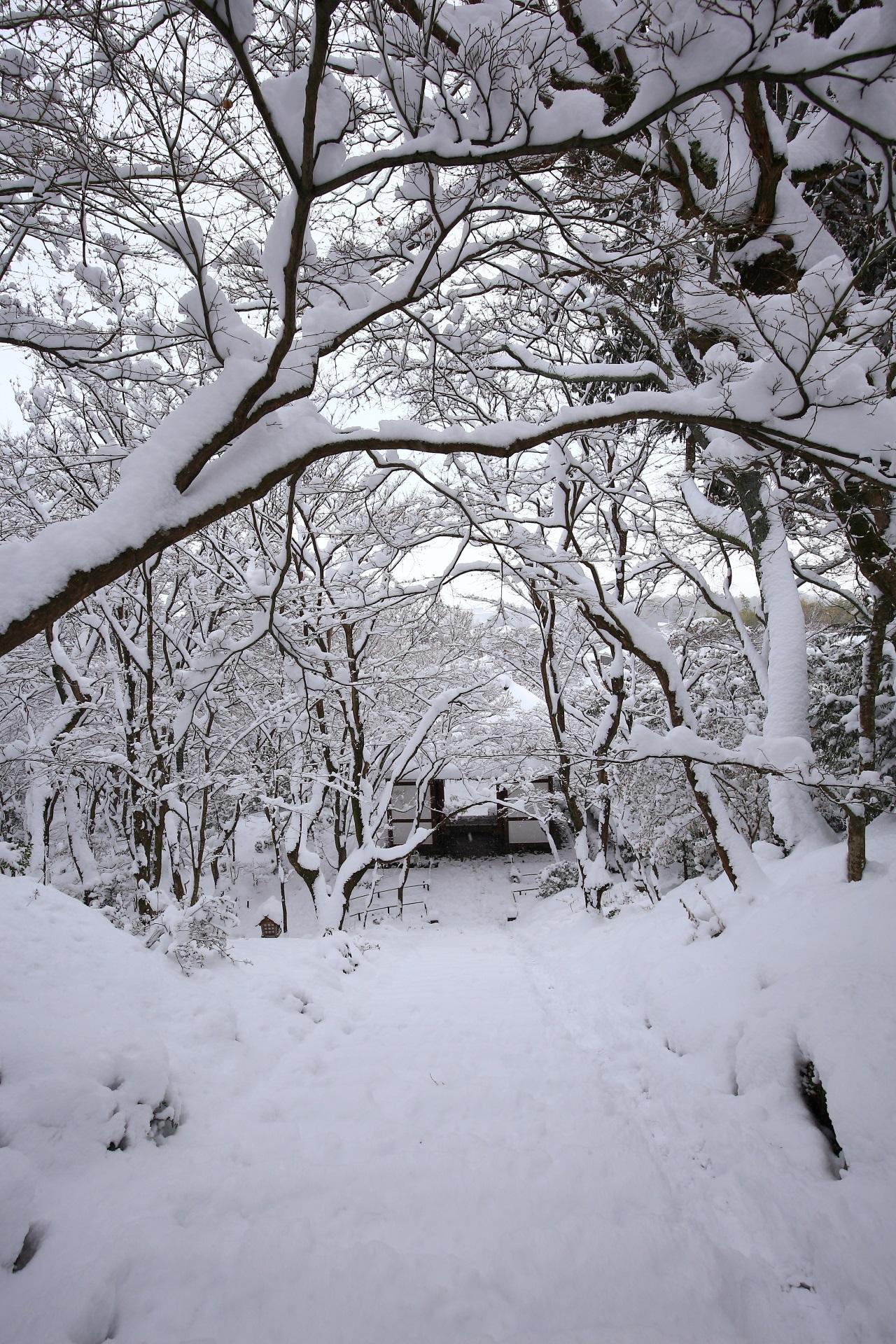 本堂前から眺めた石段と山門の雪景色