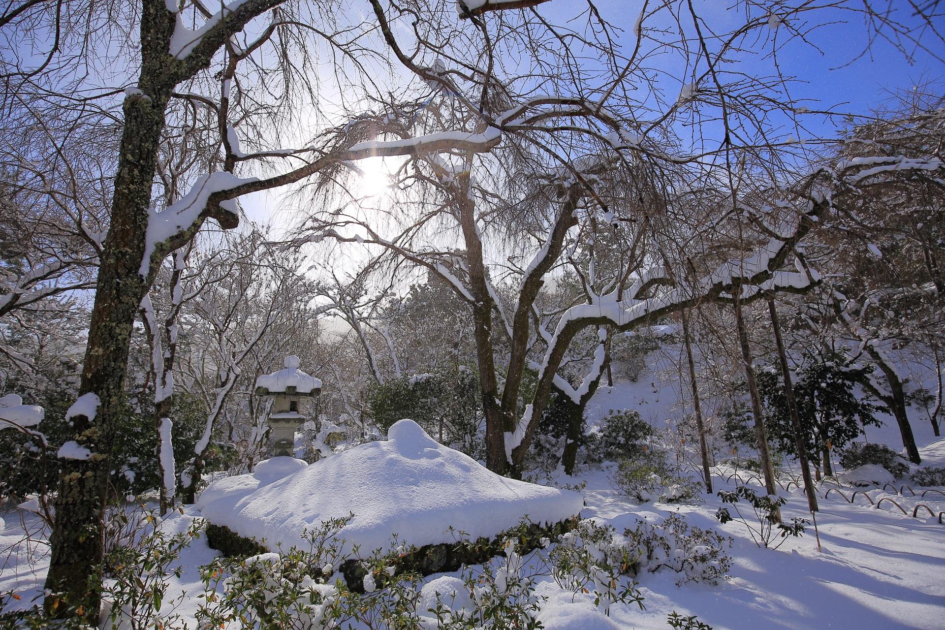 高画質 写真 天龍寺 雪景色