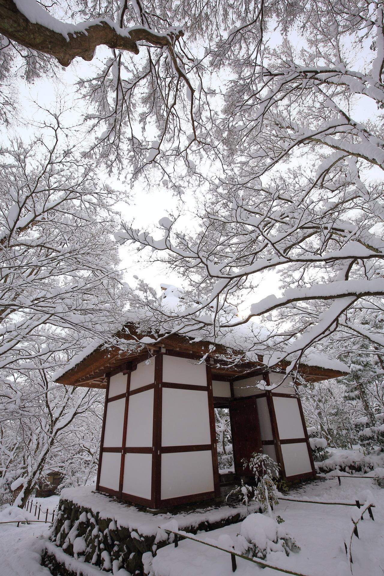 Kyoto Jyojyakko-ji Temple snowy landscape winter