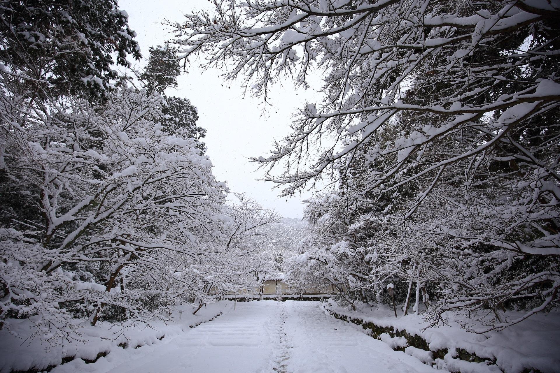 Kyoto Saga Nison-in Temple snowy landscape
