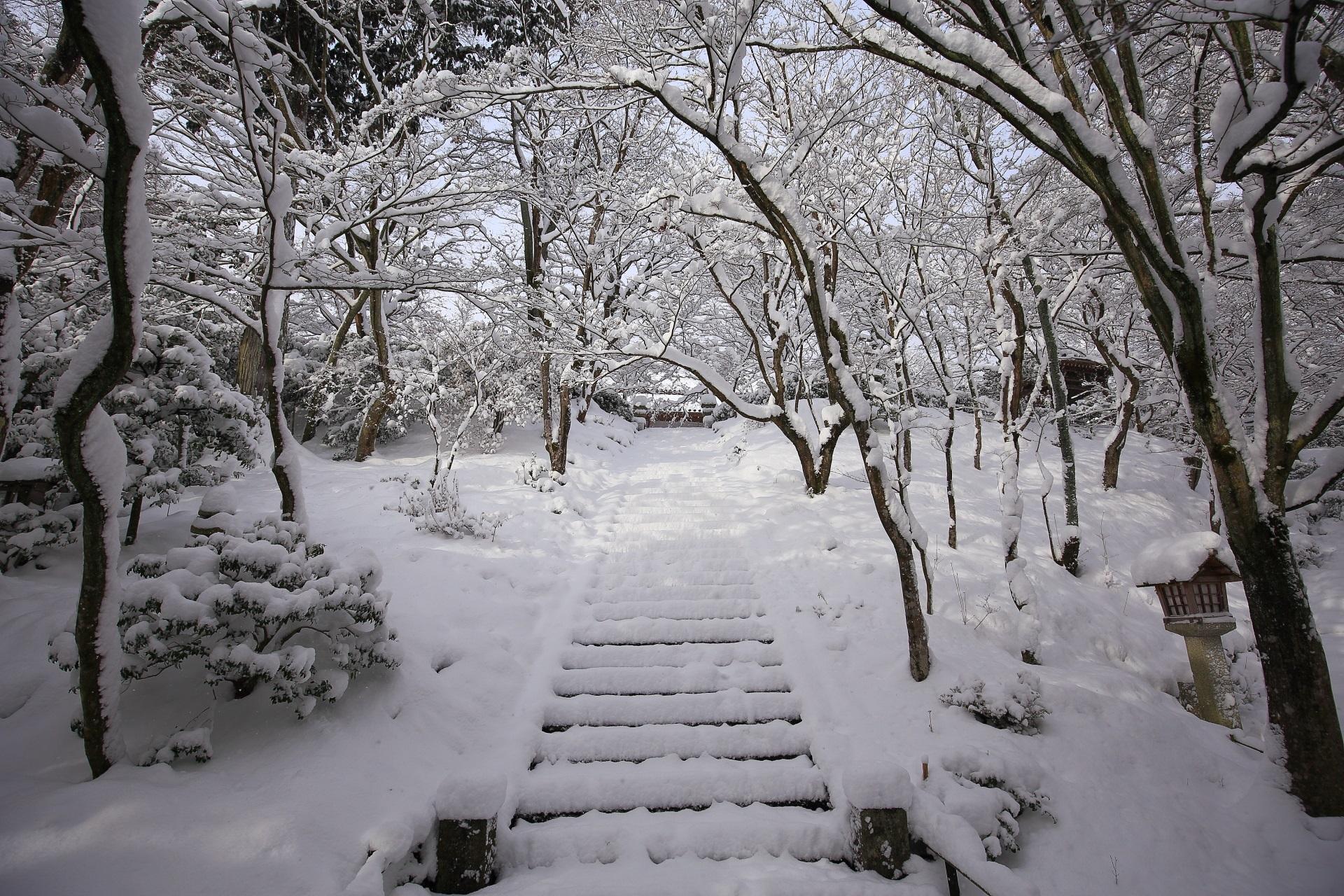 常寂光寺の本堂前石段の雪景色