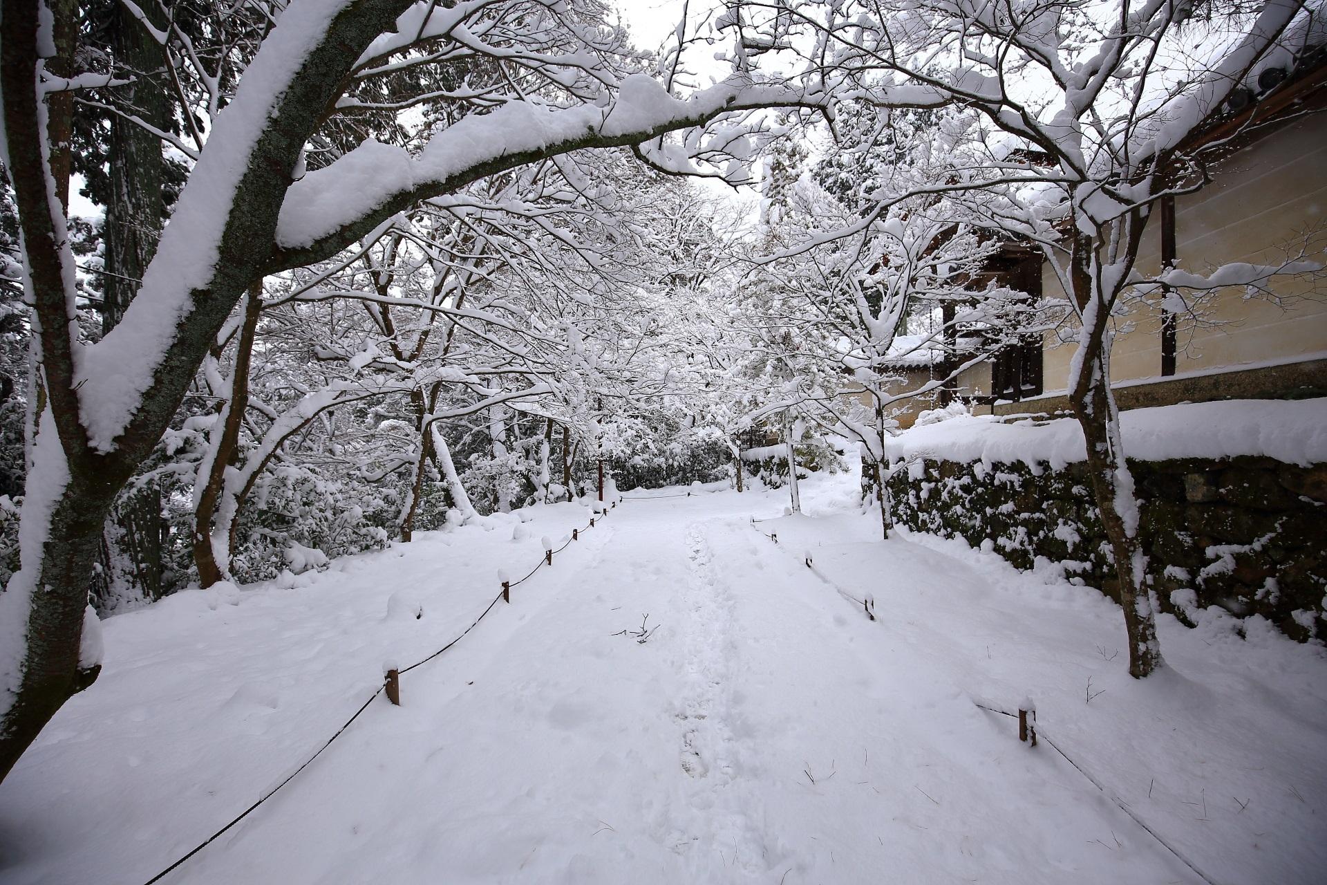 雪景色につつまれた二尊院の参道