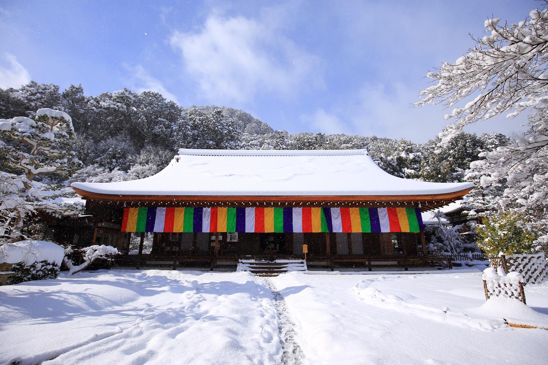 二尊院の絵になる青空の雪景色