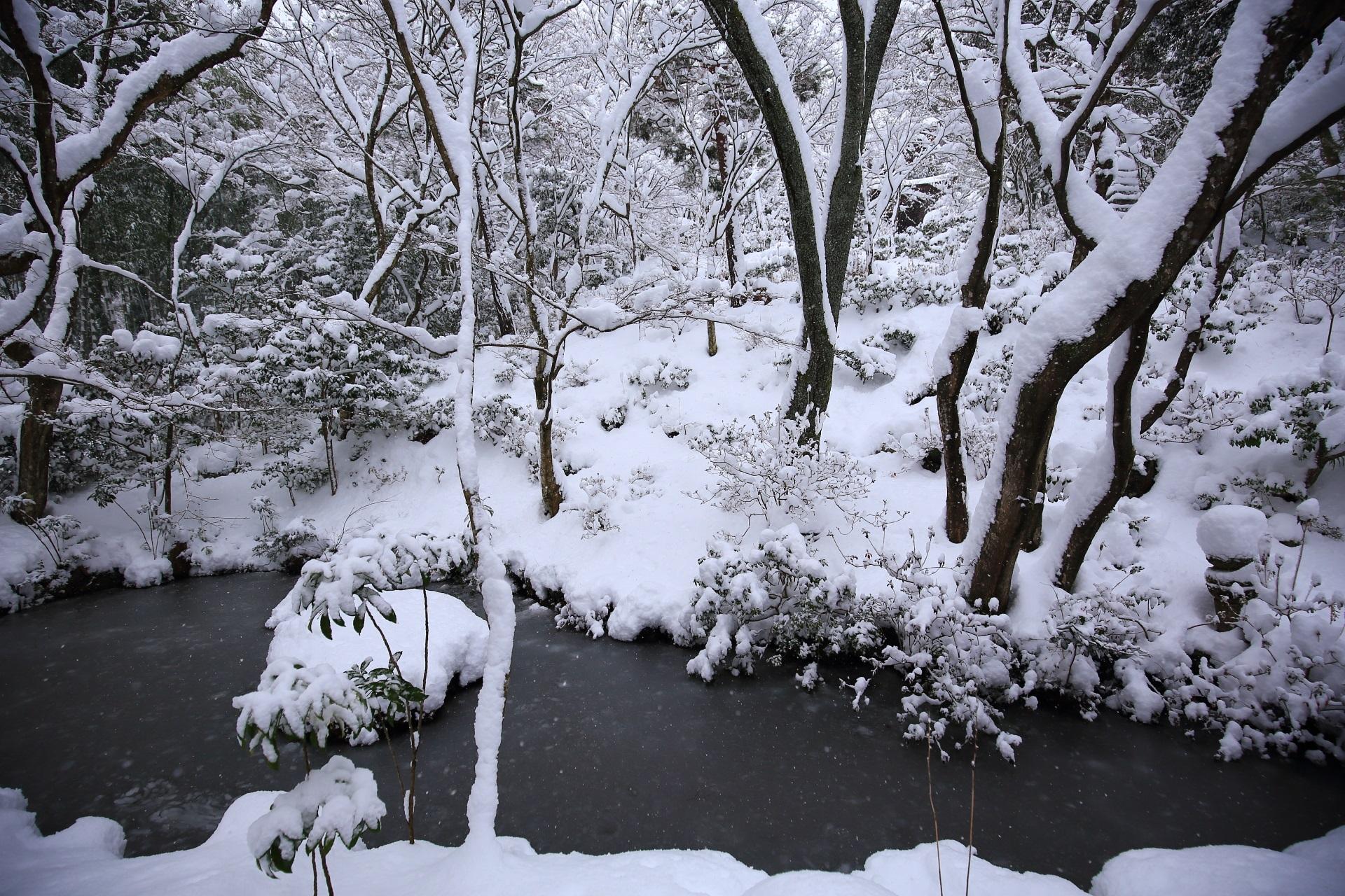 一面雪に覆われた常寂光寺の本堂庭園