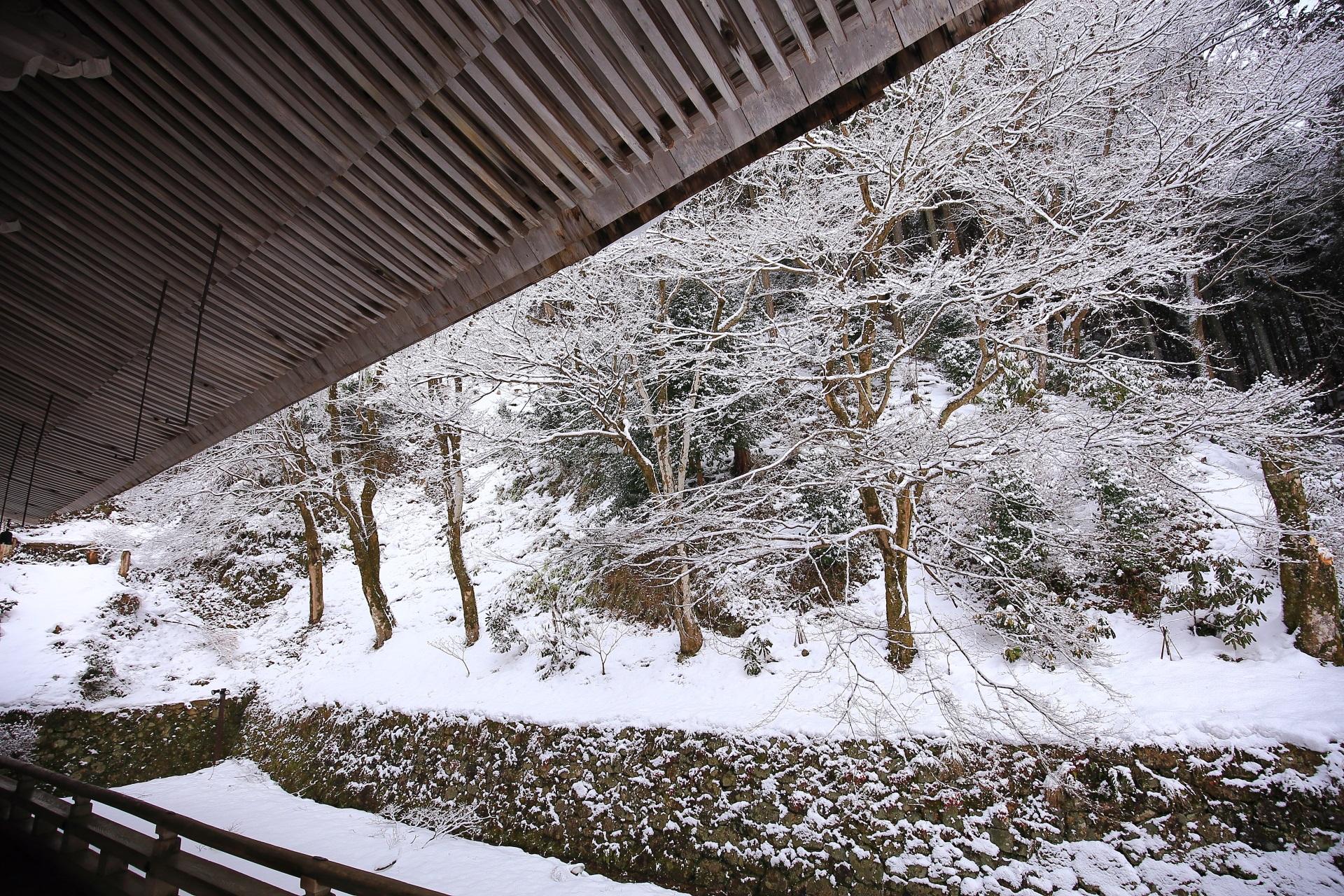 誰もいない独り占めの素晴らしい雪景色