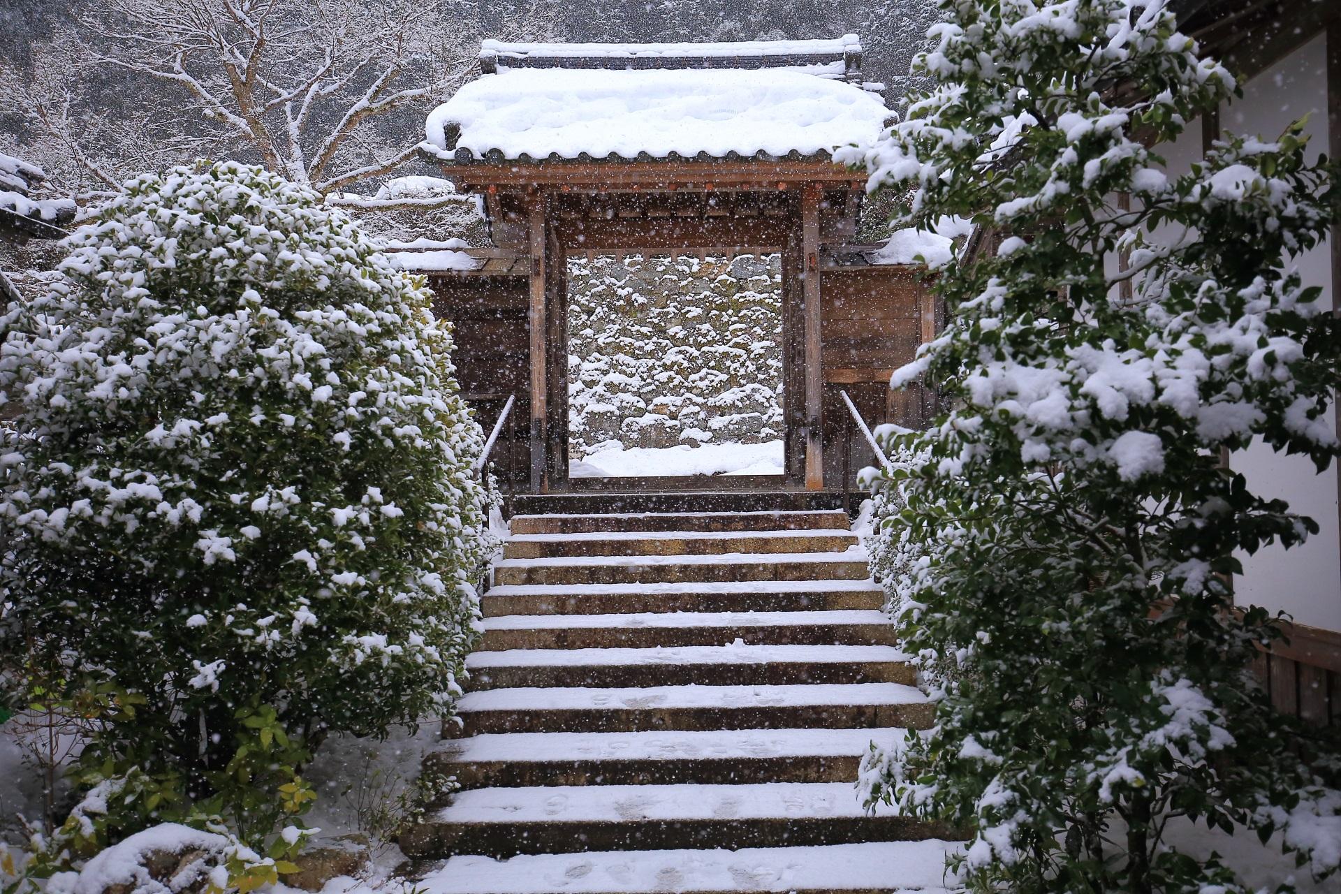 内から眺めた実光院の山門と雪