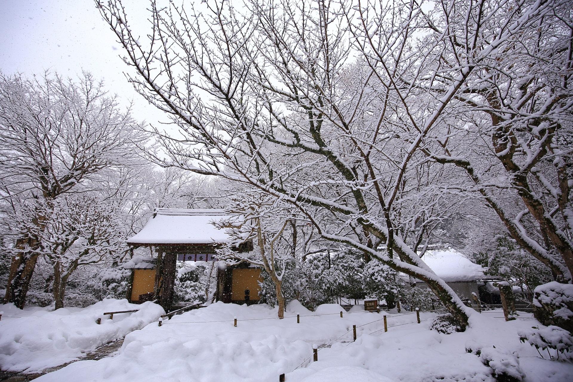 白銀に包まれた寂光院の山門