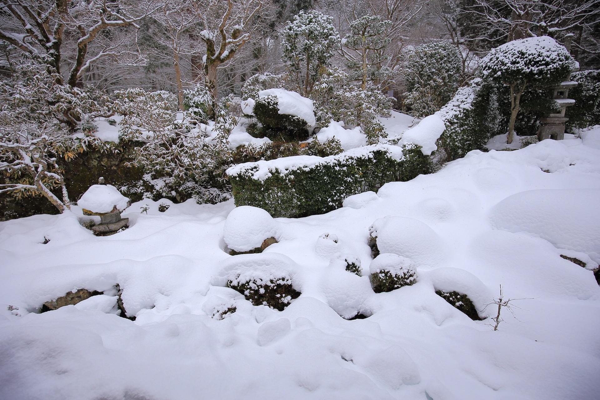 木に雪が積もる美しい三千院