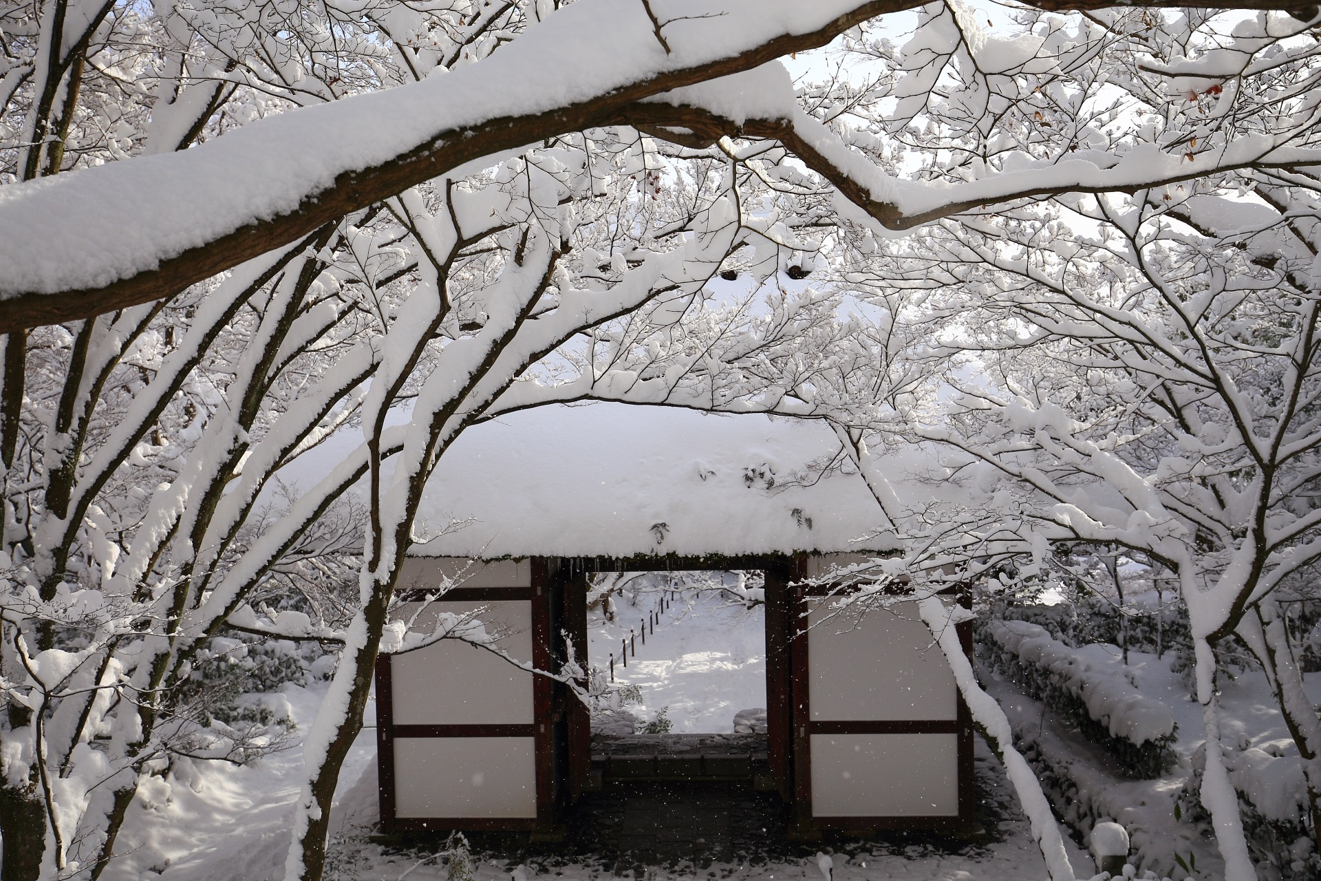 Kyoto Sagano Jyojyakko-ji Temple snowy landscape