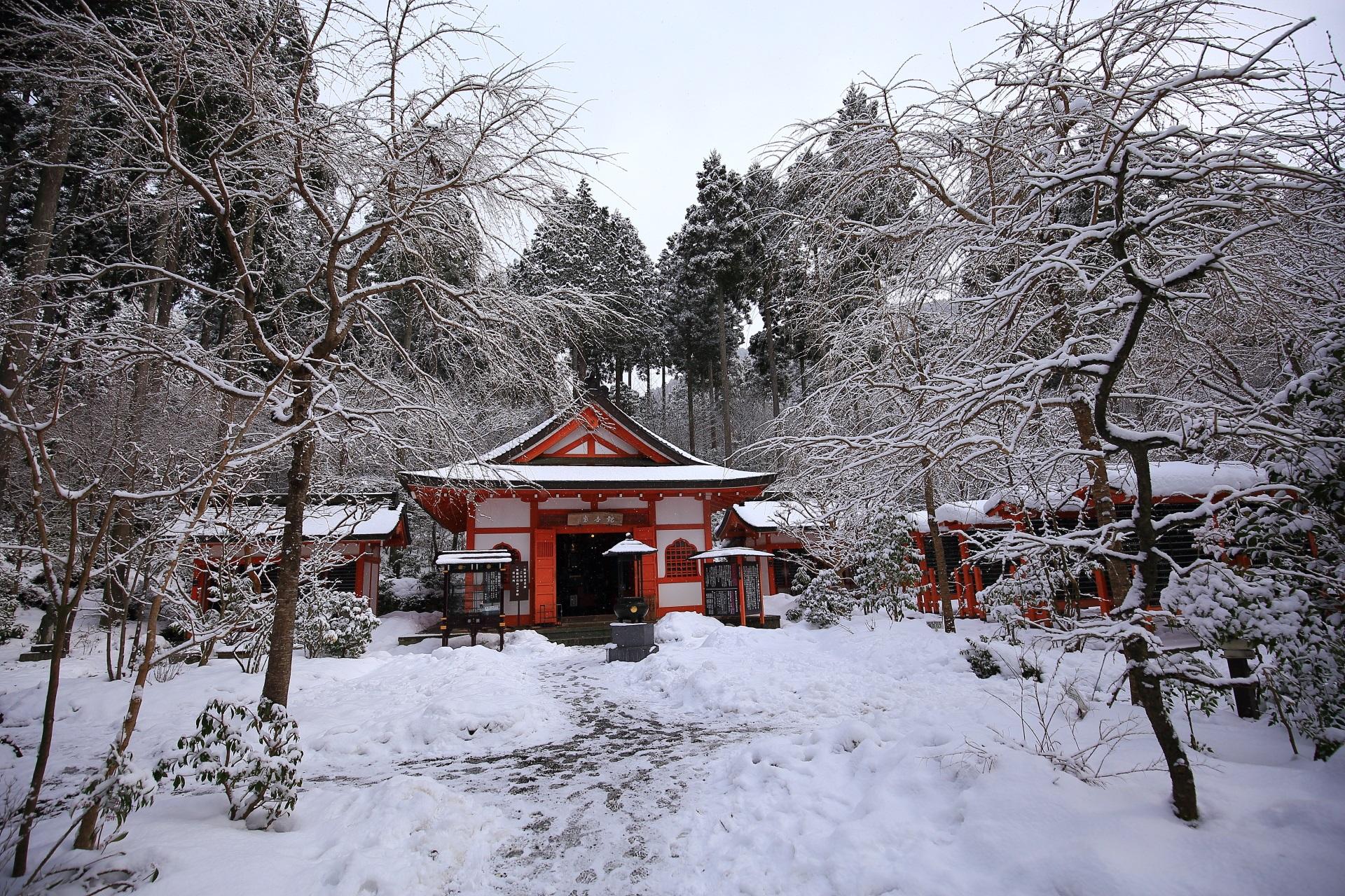 冬の三千院の見事な雪景色
