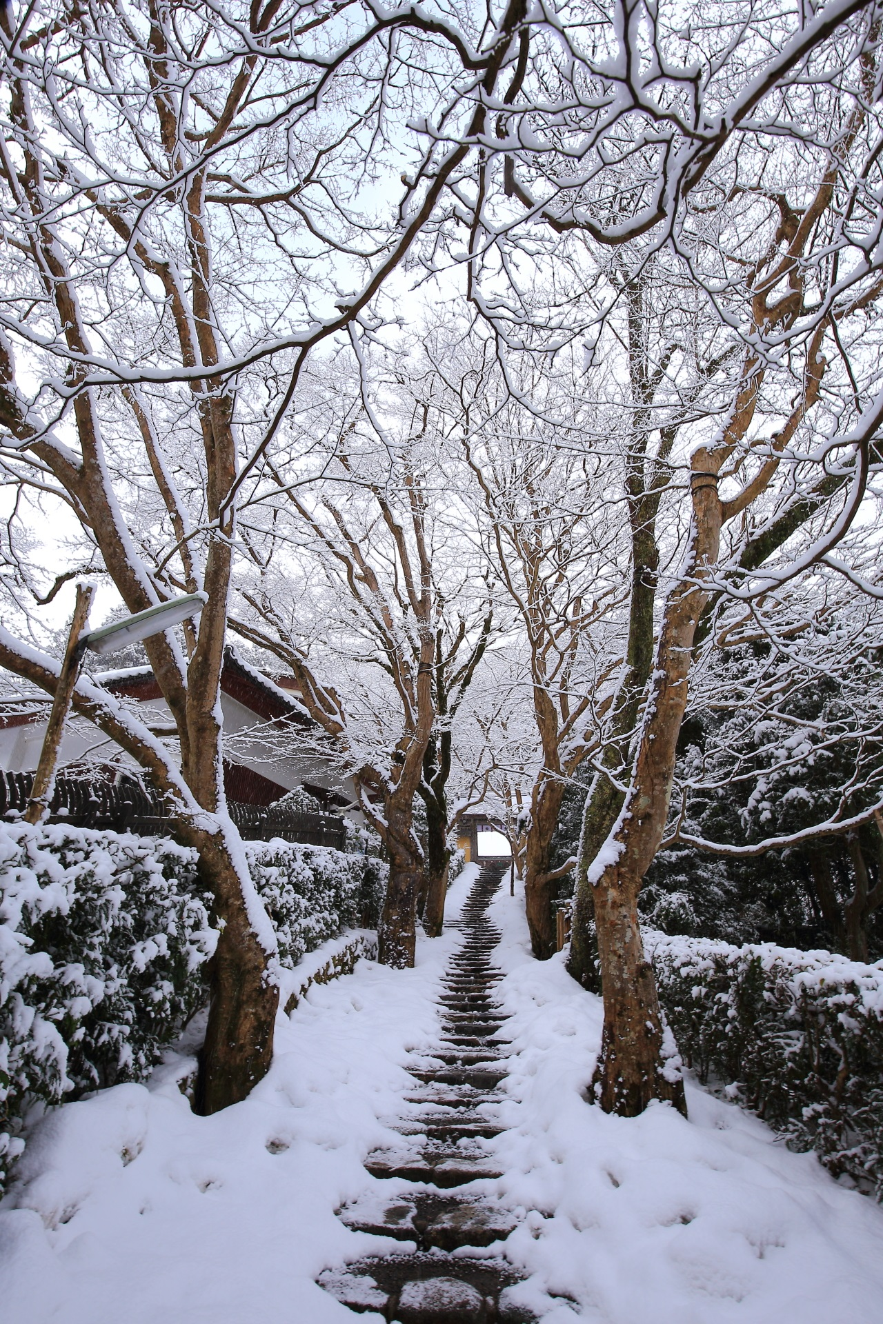 Kyoto Ohara Jyakkoin-Temple snowy landscape