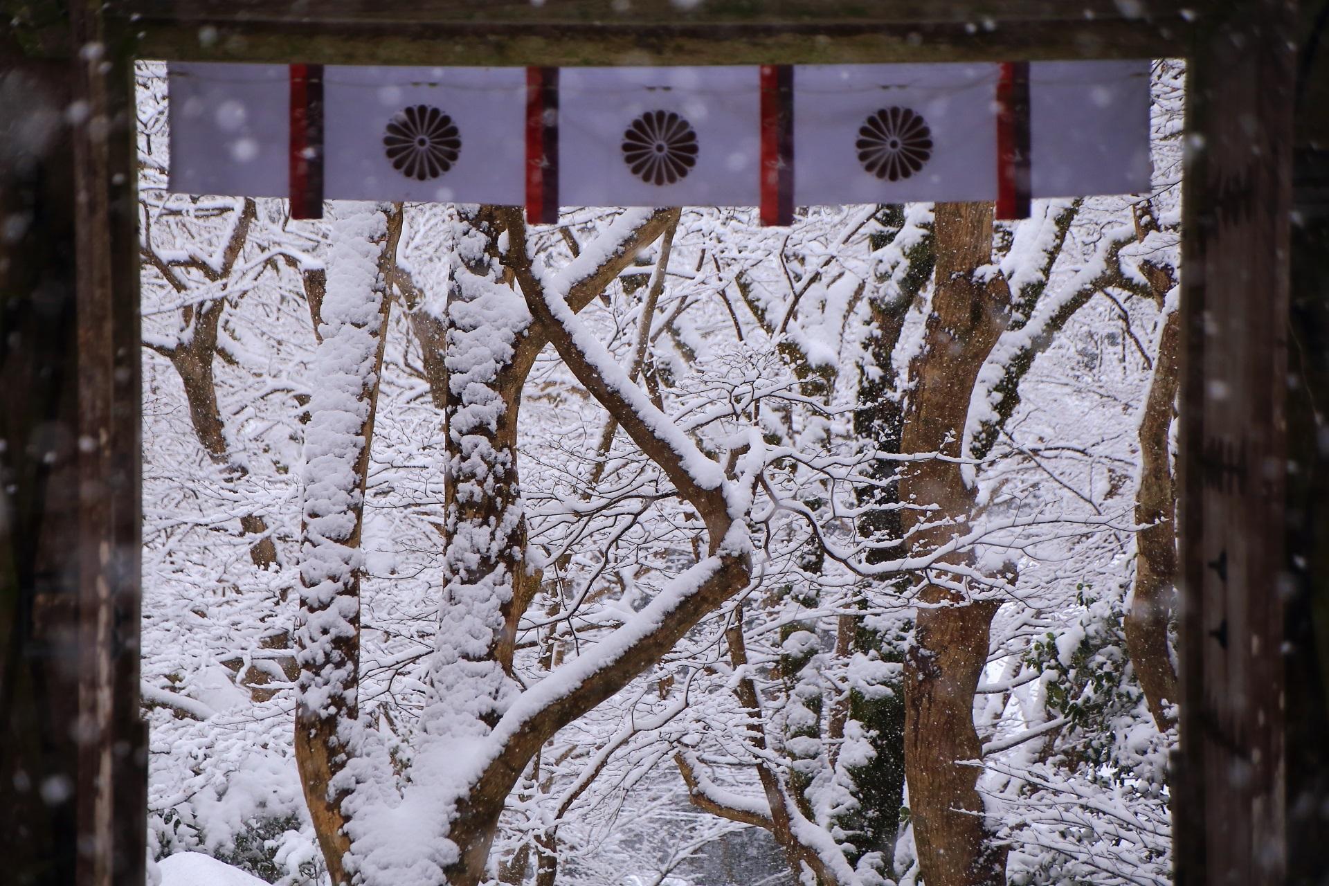額縁になる山門の雪景色