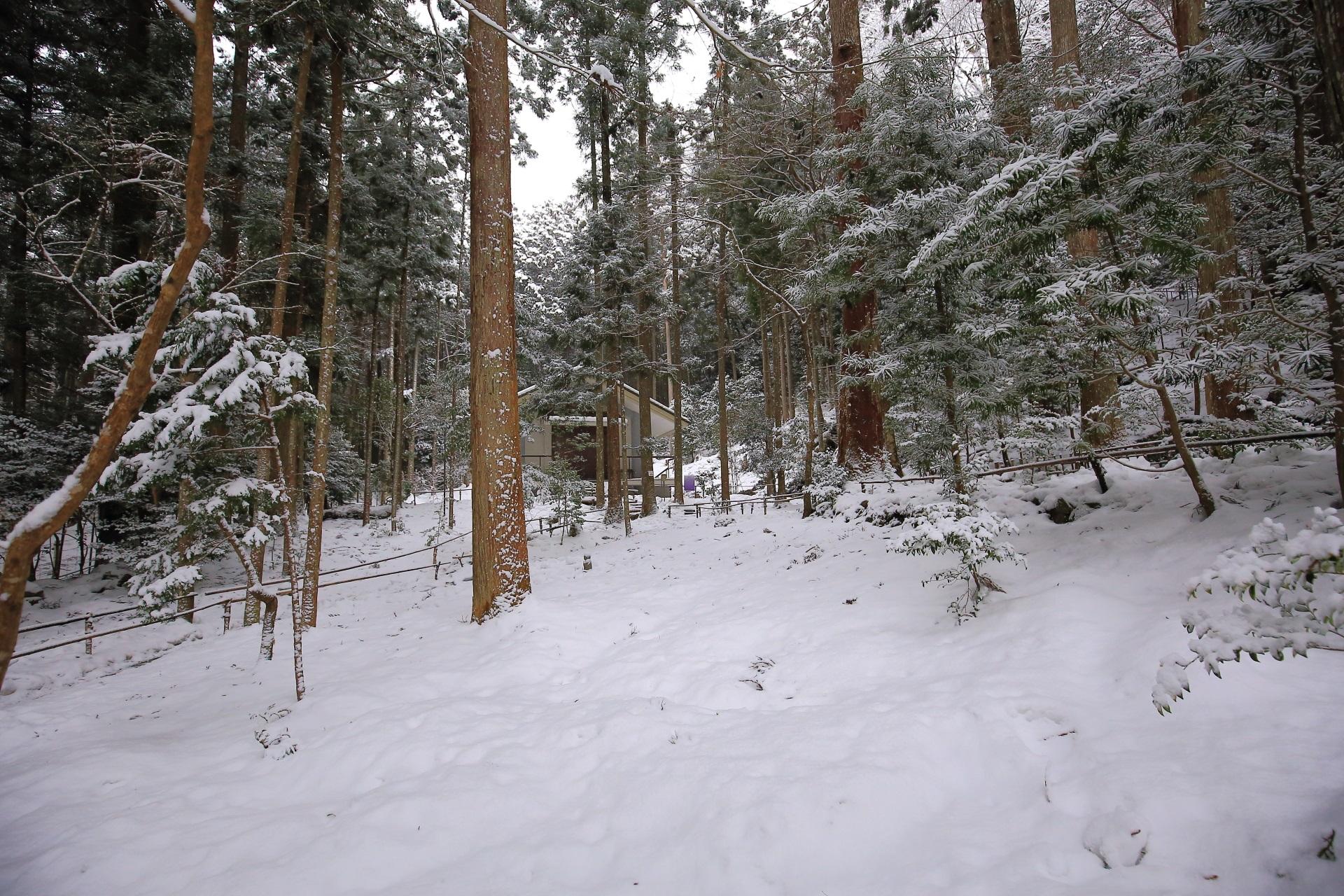 寂光院の真っ白な雪に覆われた庭園と蔵