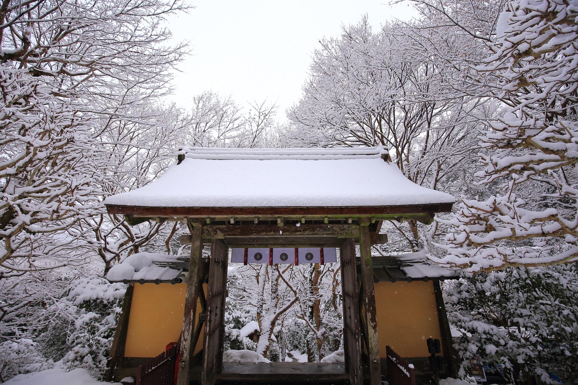 山門の内側から眺めた素晴らしい雪景色