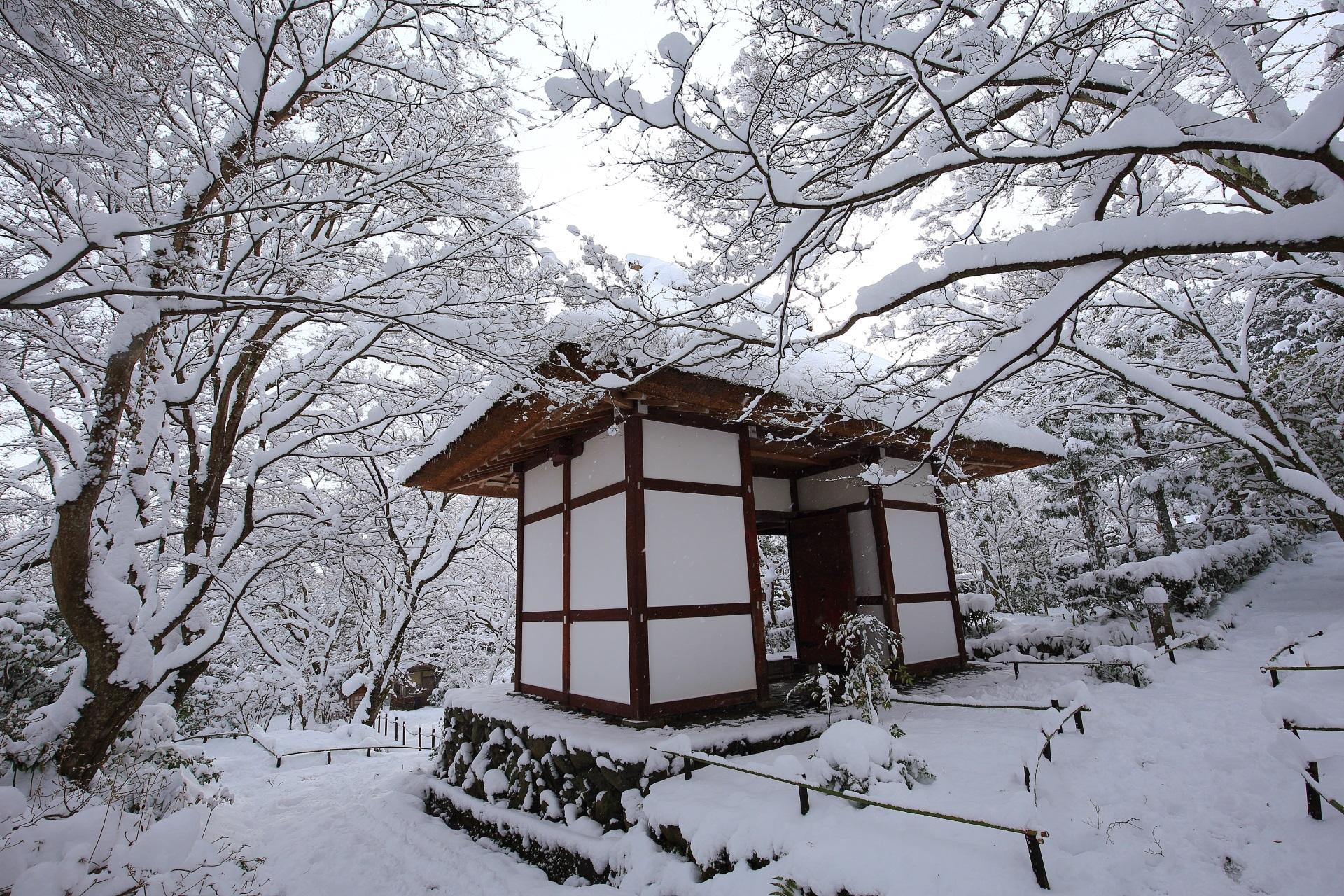 大満足の常寂光寺の冬景色