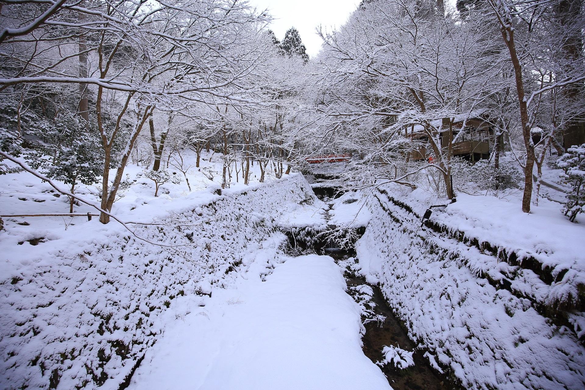 見事な雪景色の律川