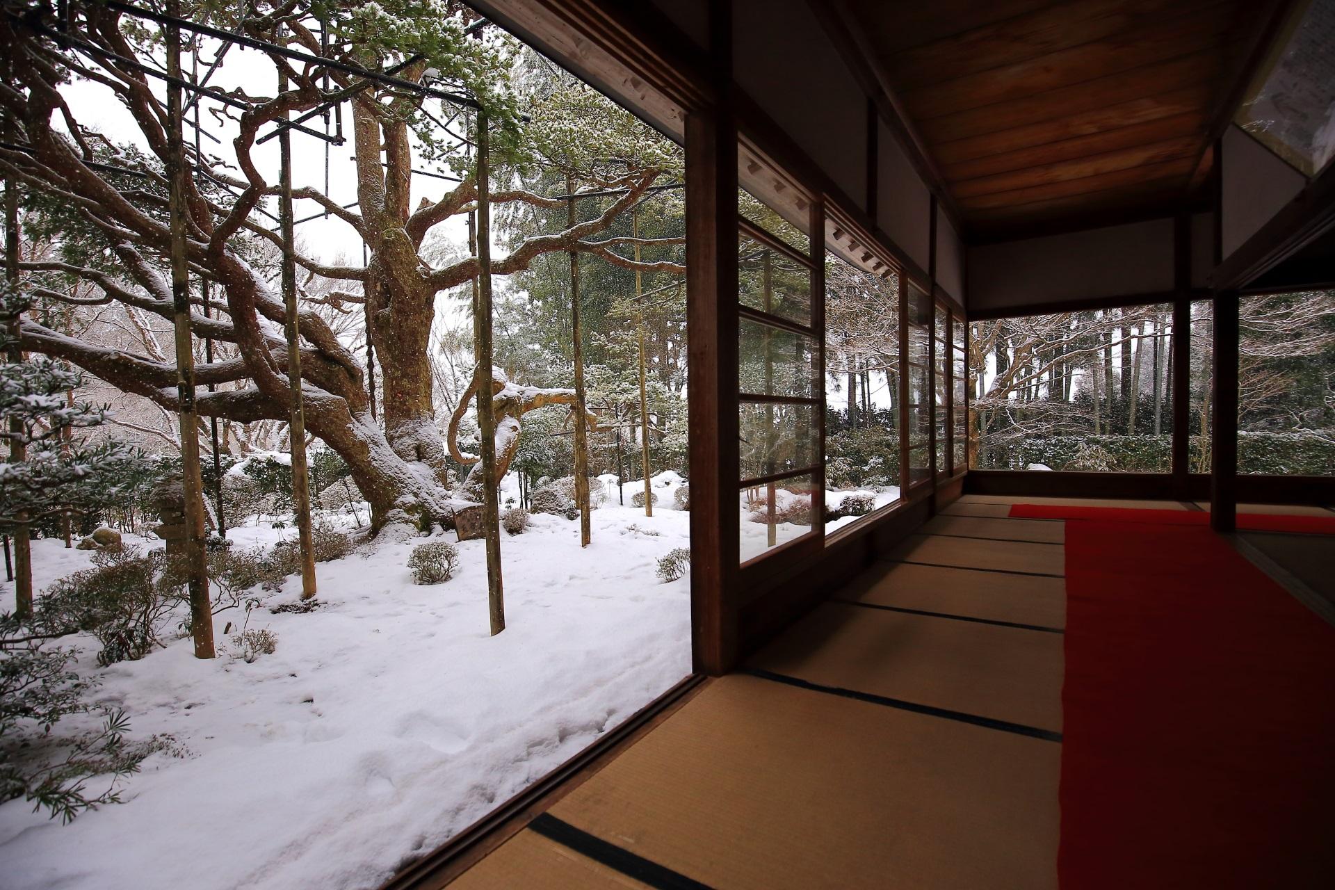Hosenin-Temple snowy landscape in Ohara Kyoto,Japan