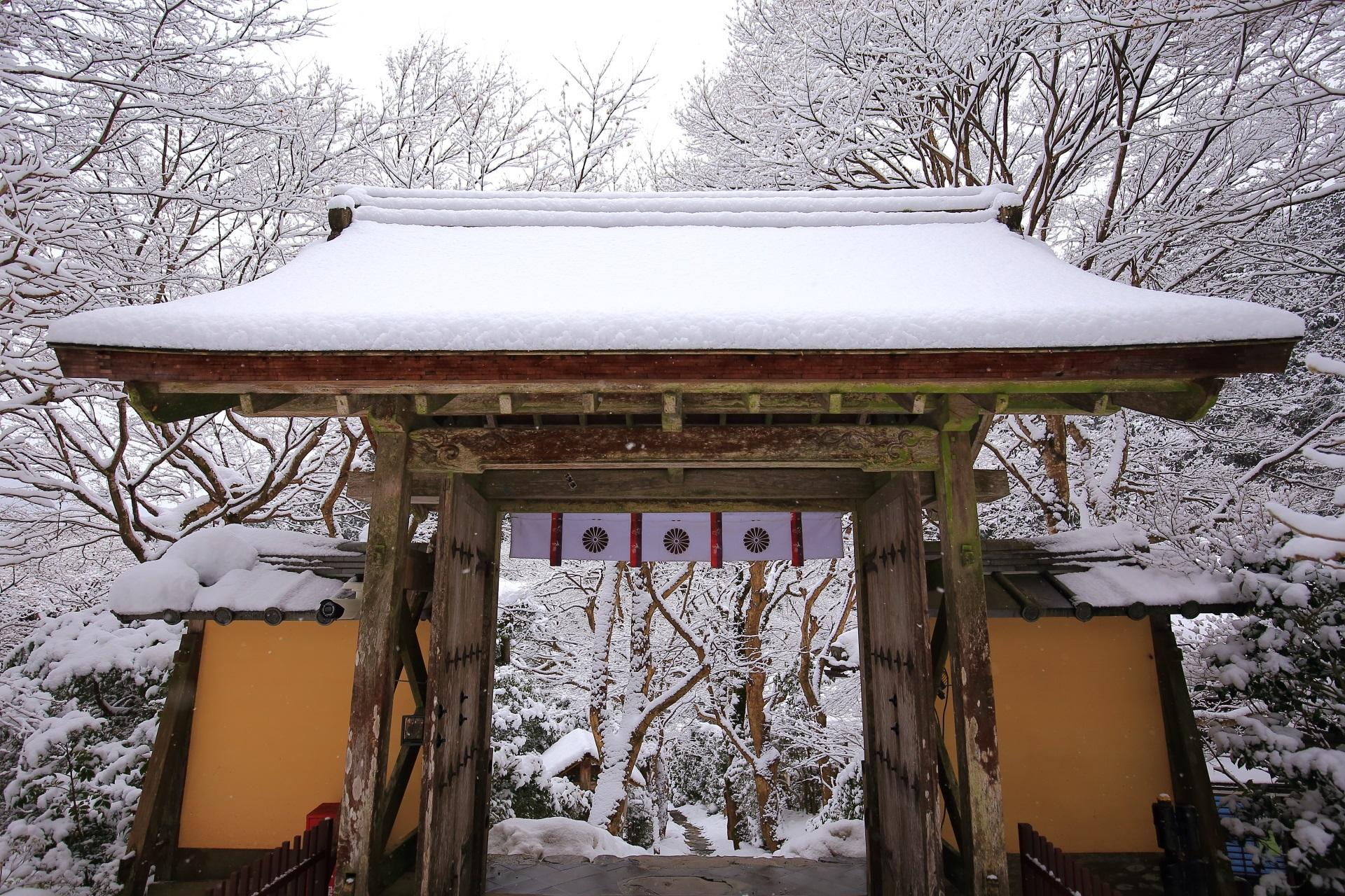 大満足の山門と石段の雪景色