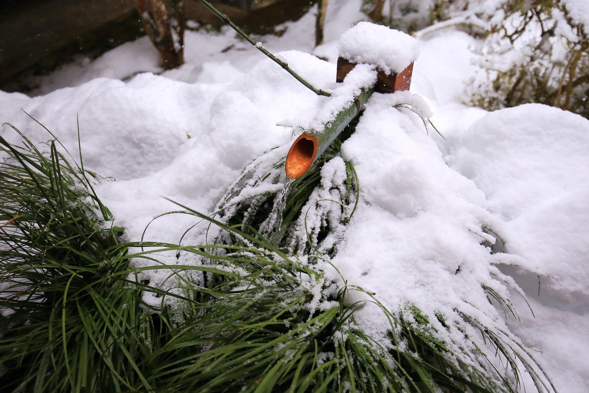 三千院 高画質 雪 写真