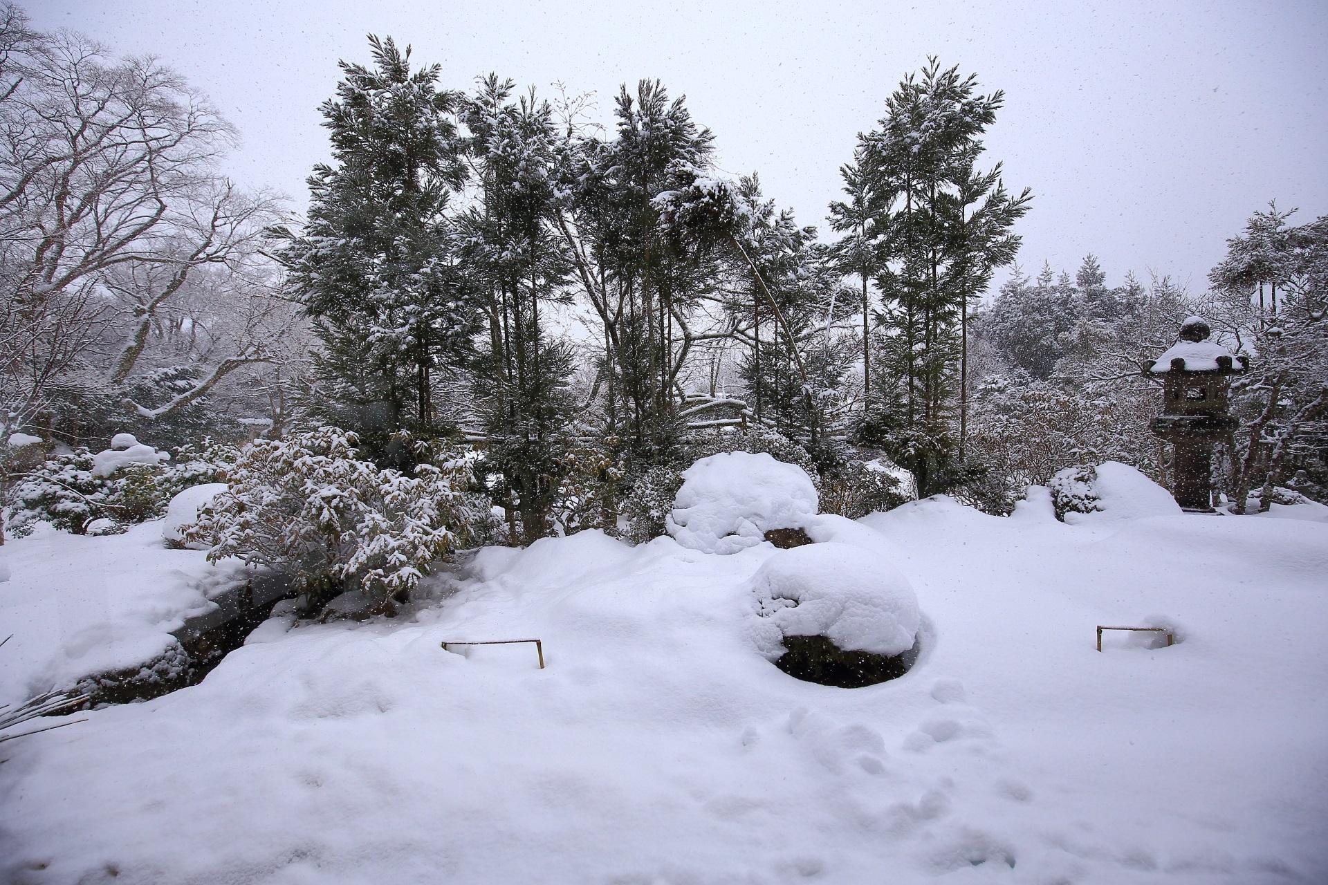雪のだいぶ積もった旧普賢院庭園
