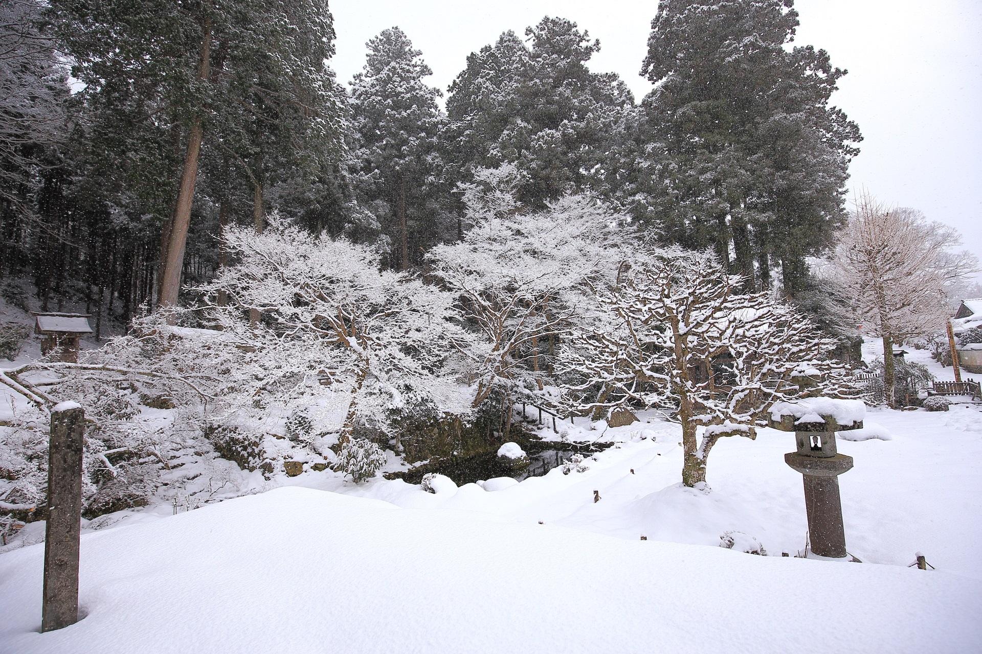 鐘楼付近の木や池の雪景色