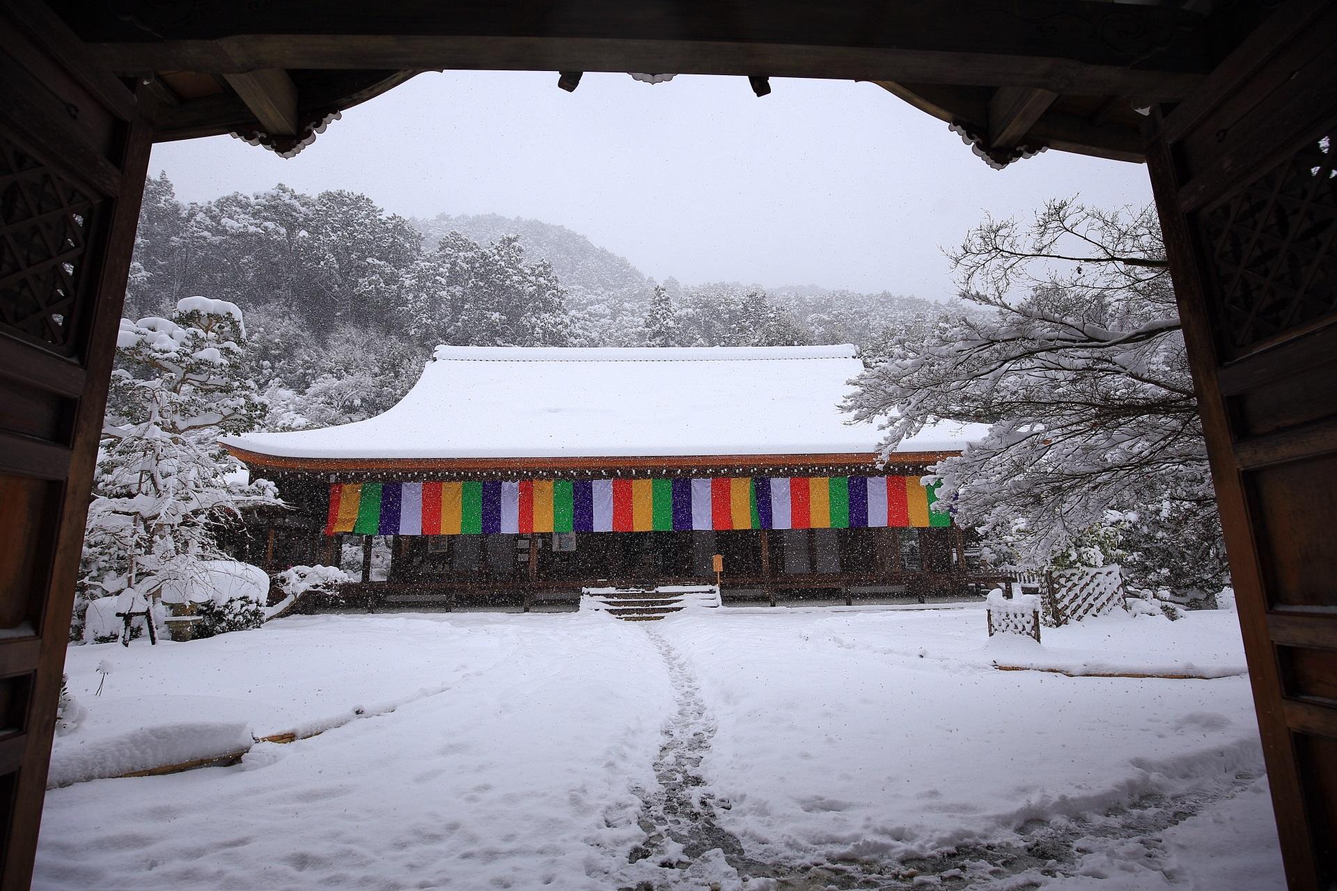 唐門の下から眺めた本堂の雪景色