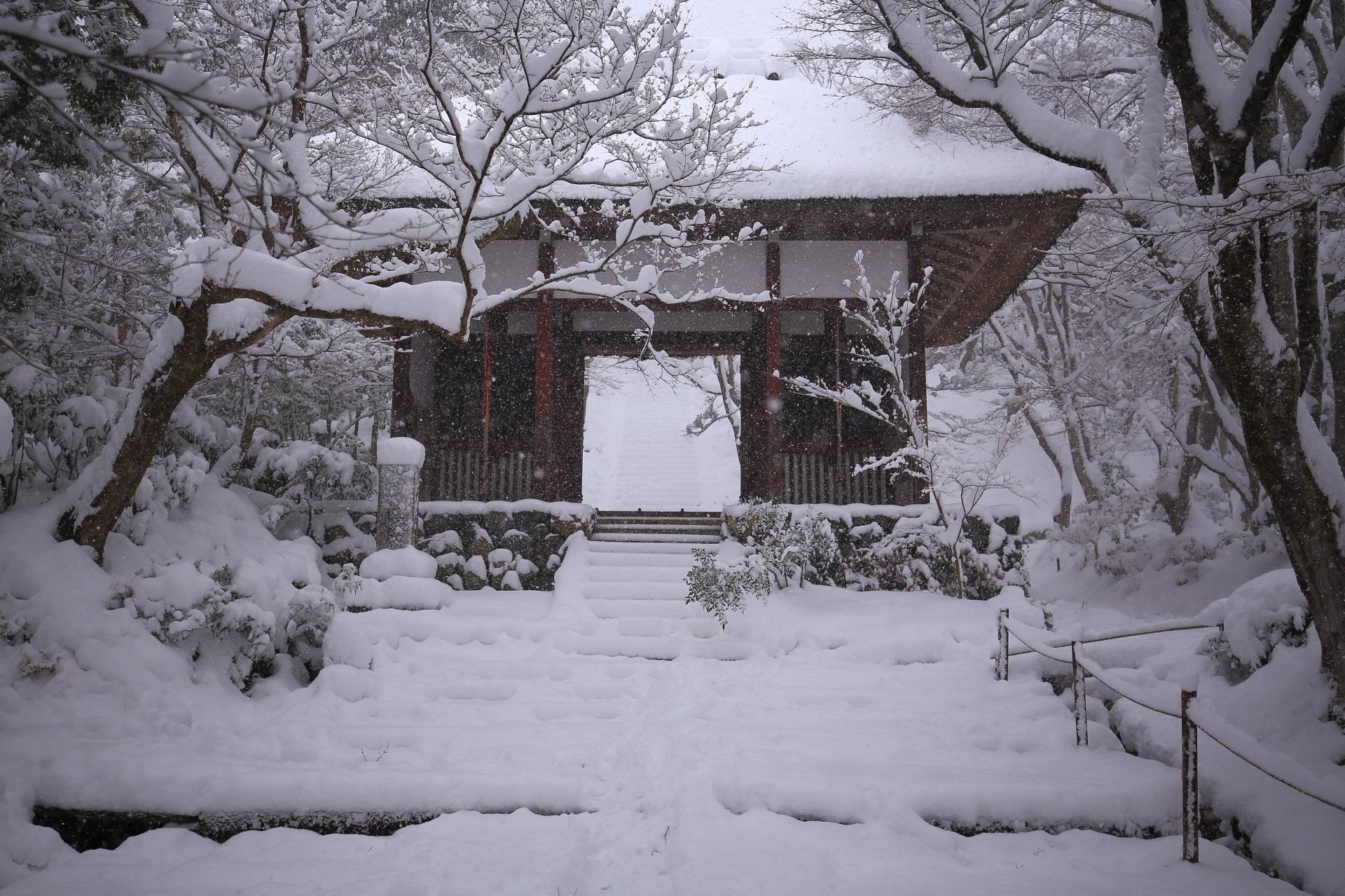 雪が強く降る常寂光寺