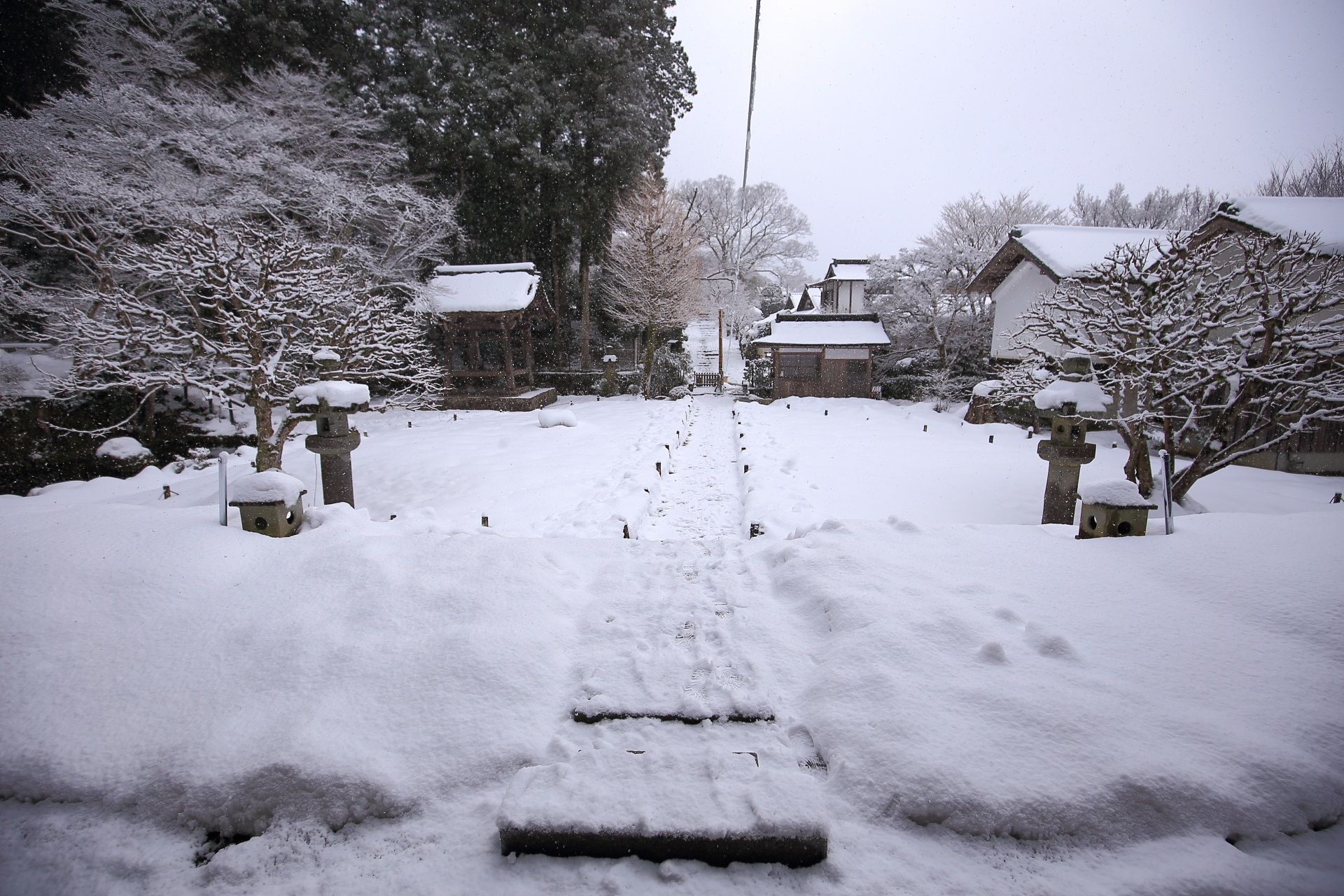 本堂正面の雪景色