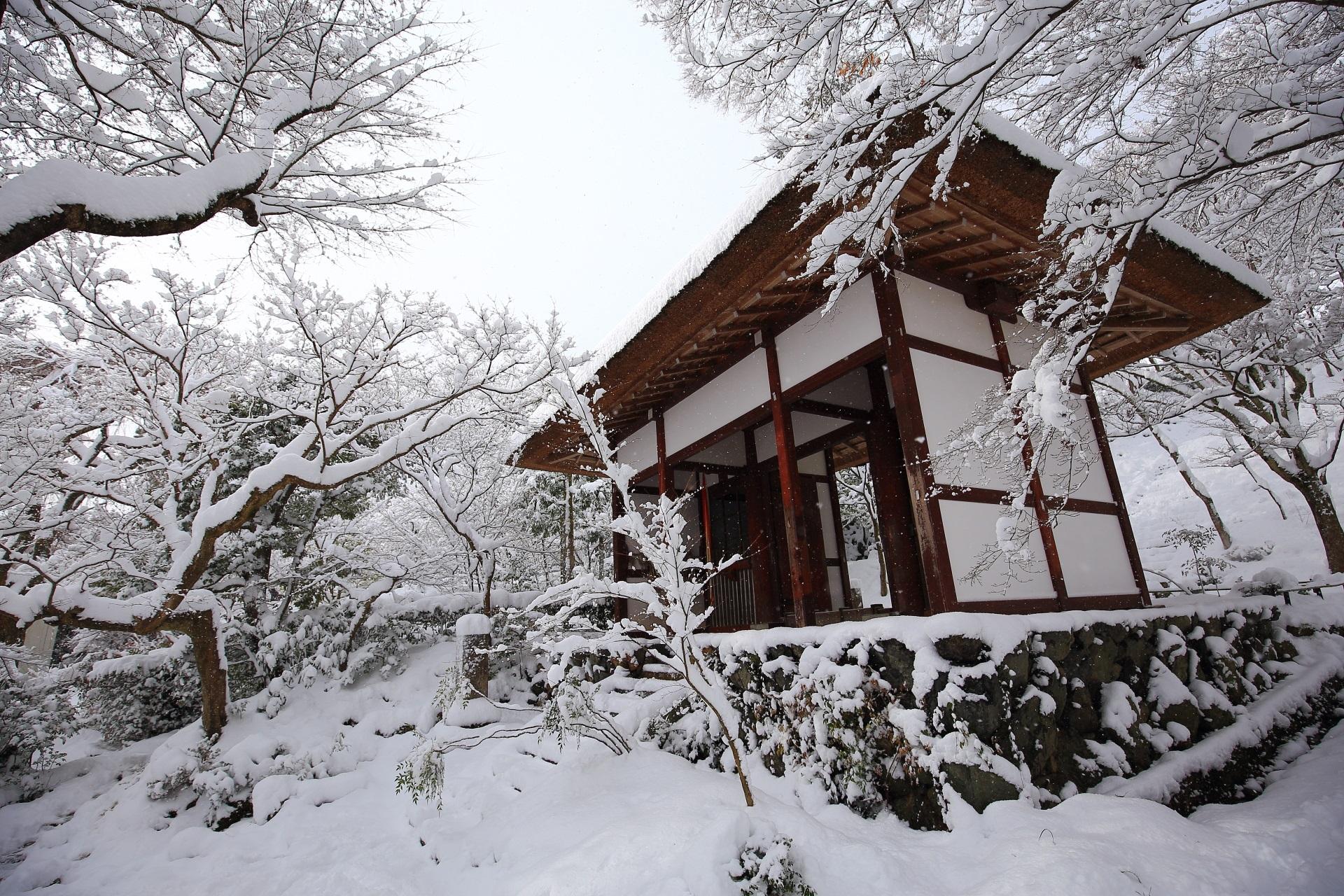 雪の積もった綺麗な山門と木々