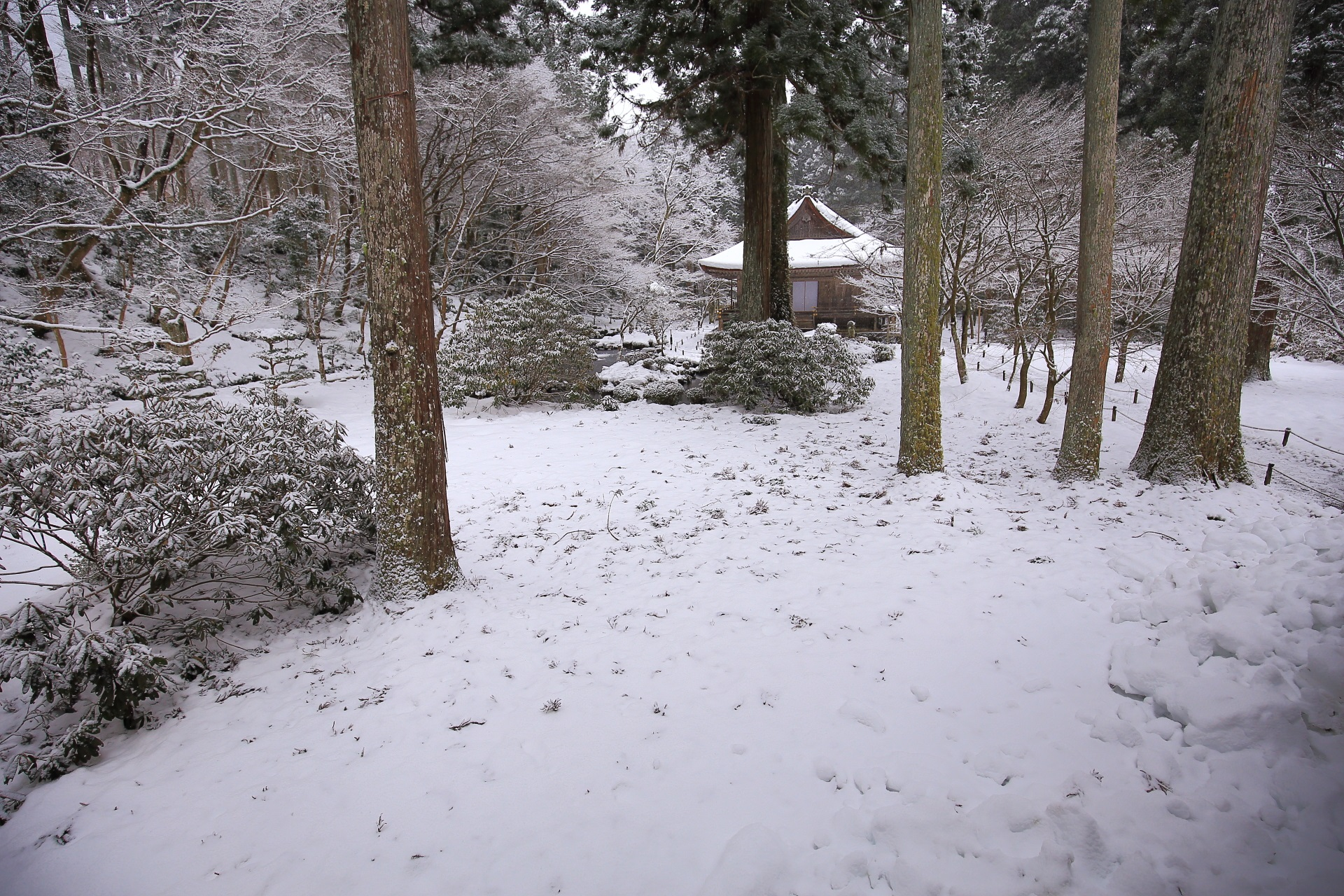 雪化粧の往生極楽院