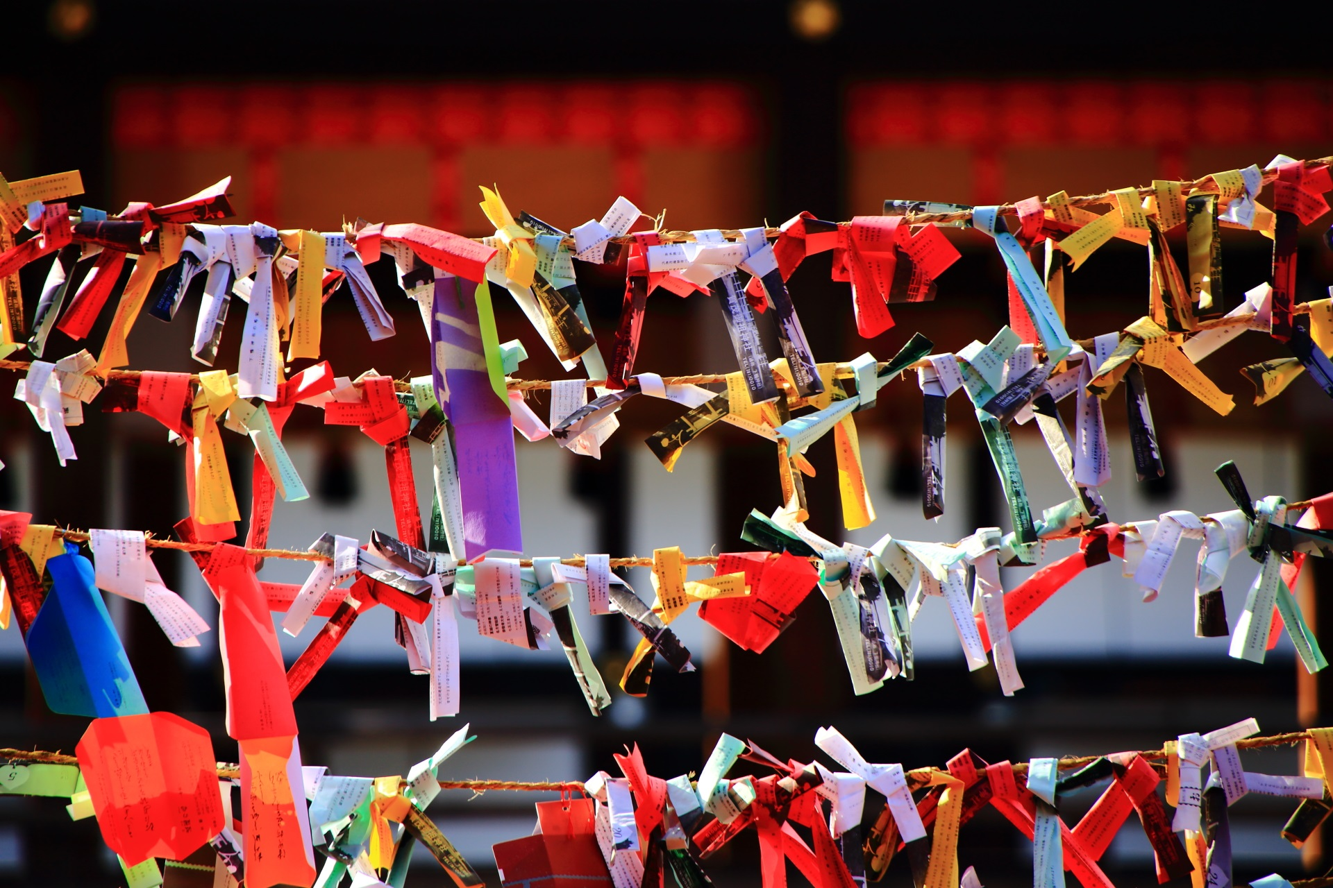 縁結びの神社の下鴨神社のカラフルなおみくじ