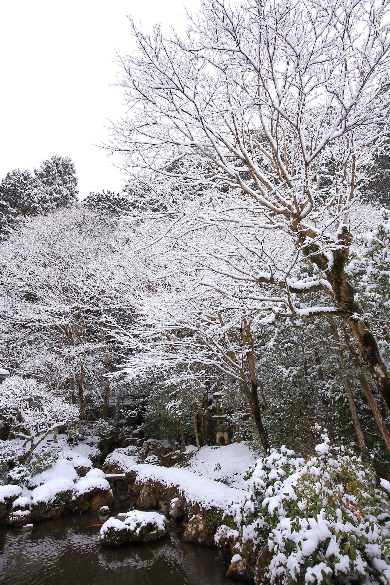 四方正面の池の雪景色