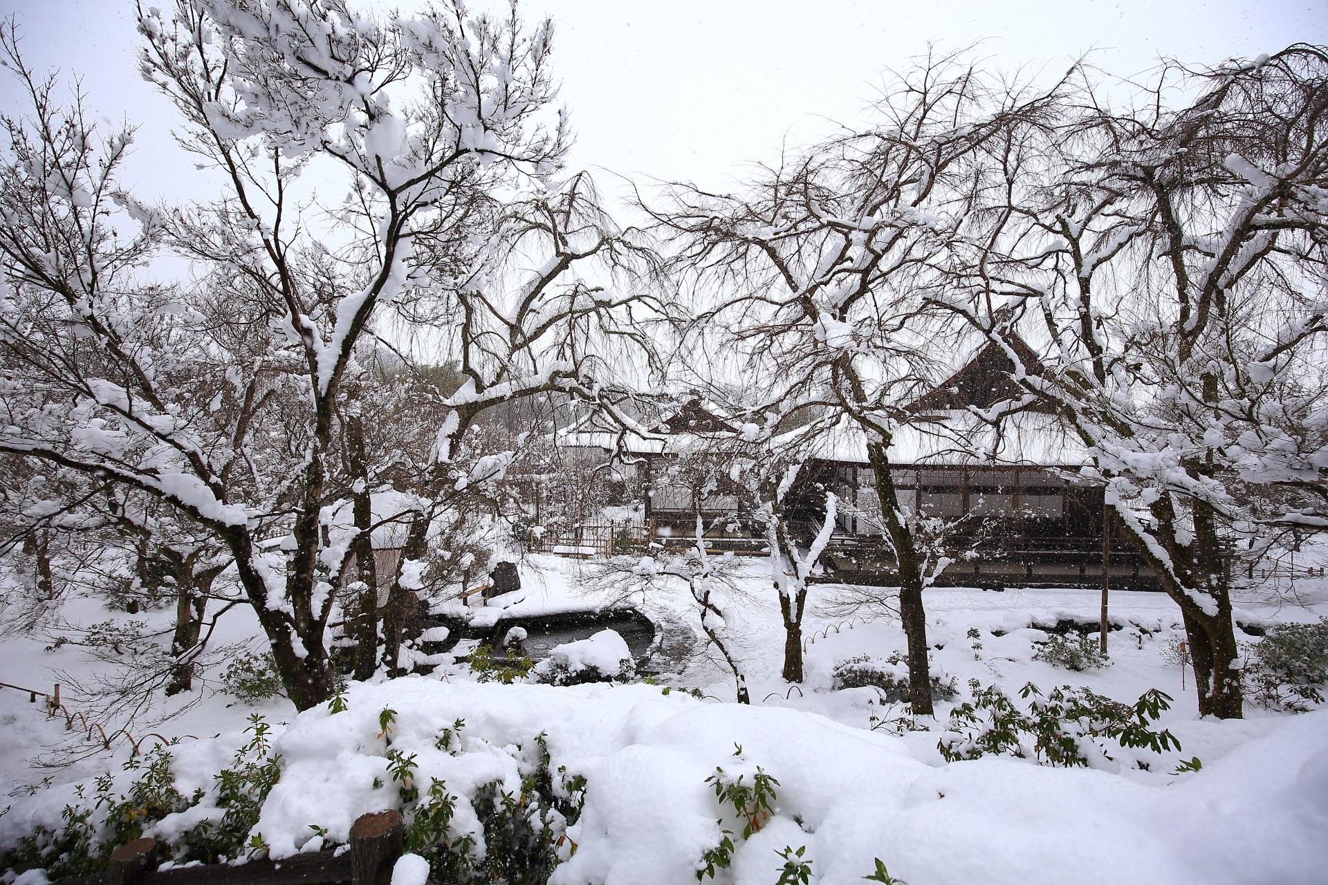 天龍寺の百花苑の雪景色