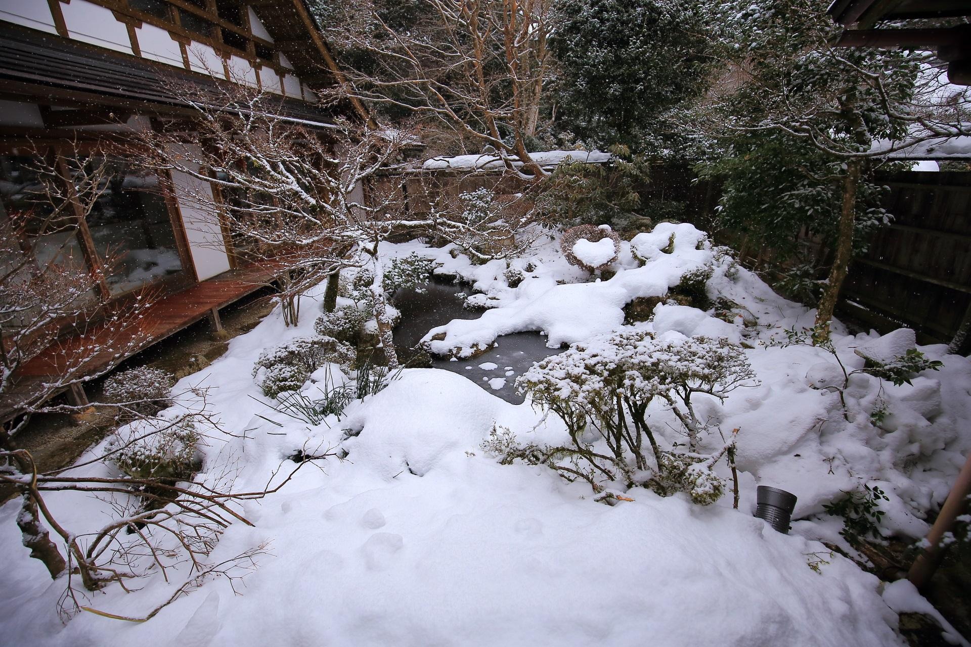 真っ白に雪化粧した鶴亀庭園
