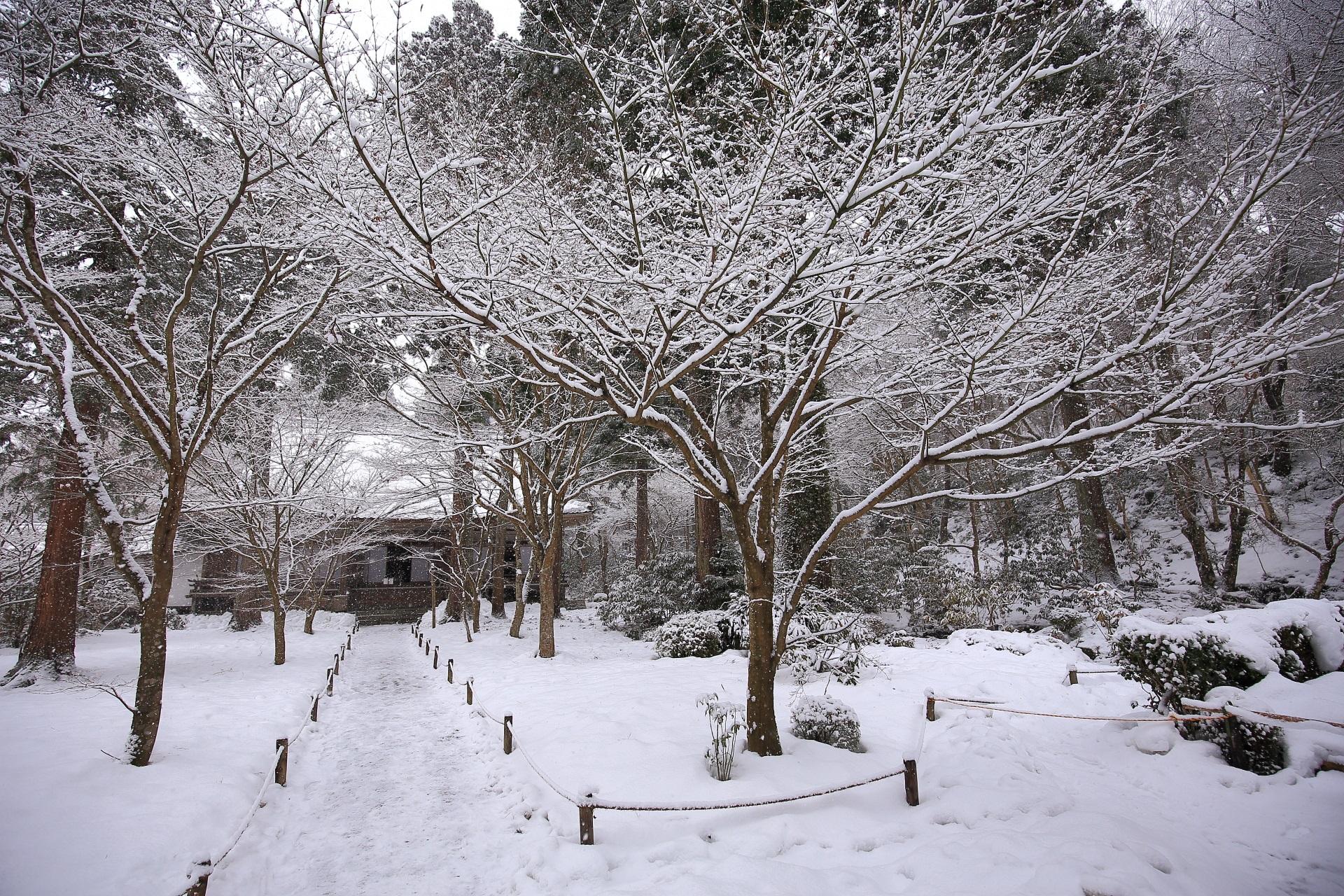 雪につつまれた三千院の宸殿