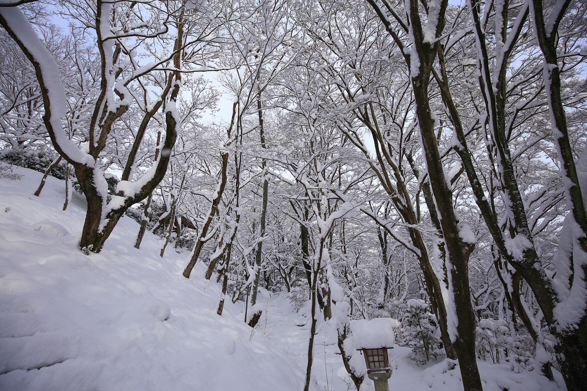 本堂前石段から眺めた雪につつまれた末吉坂
