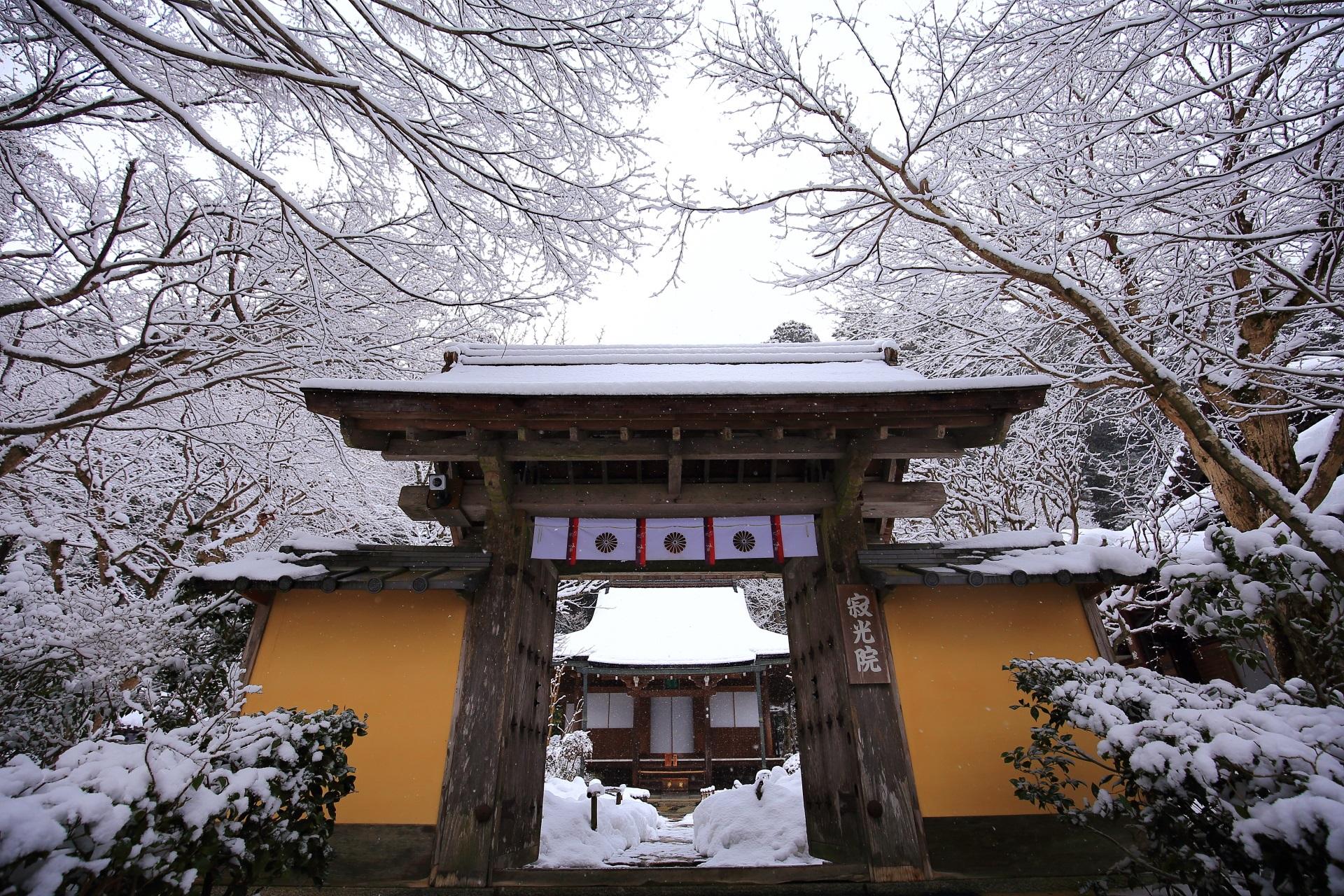 山門の奥に見える雪の本堂
