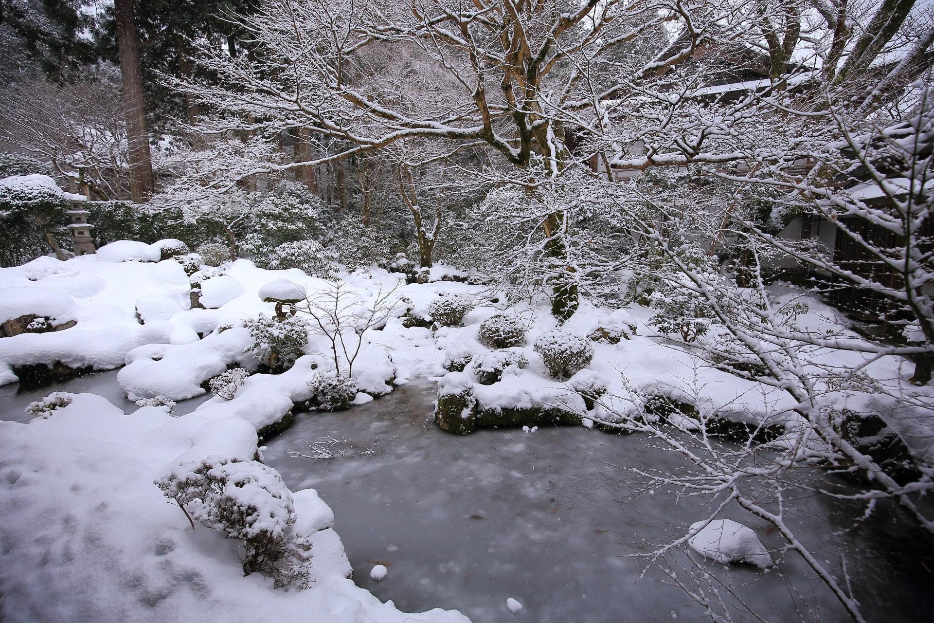 雪の花が咲く三千院の木々