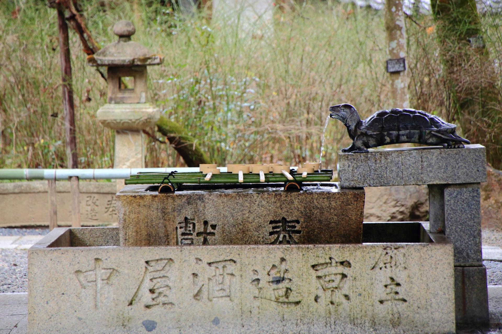 京都の松尾大社の亀の手水舎