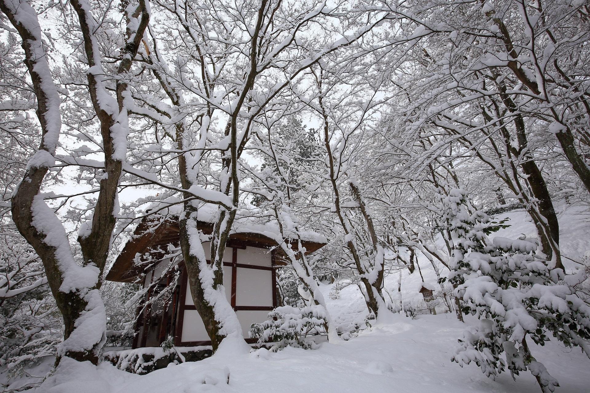 常寂光寺の雪の芸術