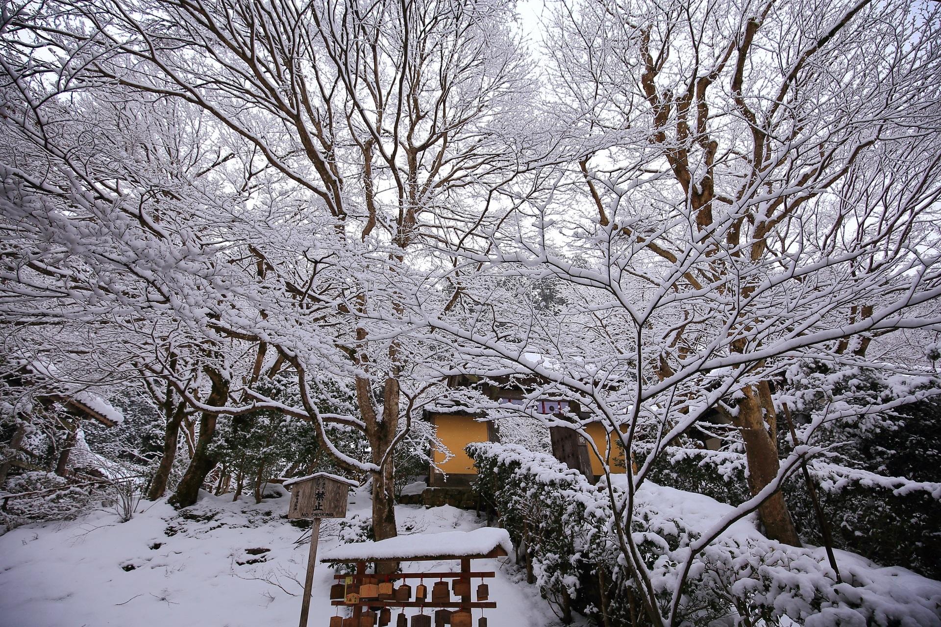 芸術的な雪の枝の寂光院